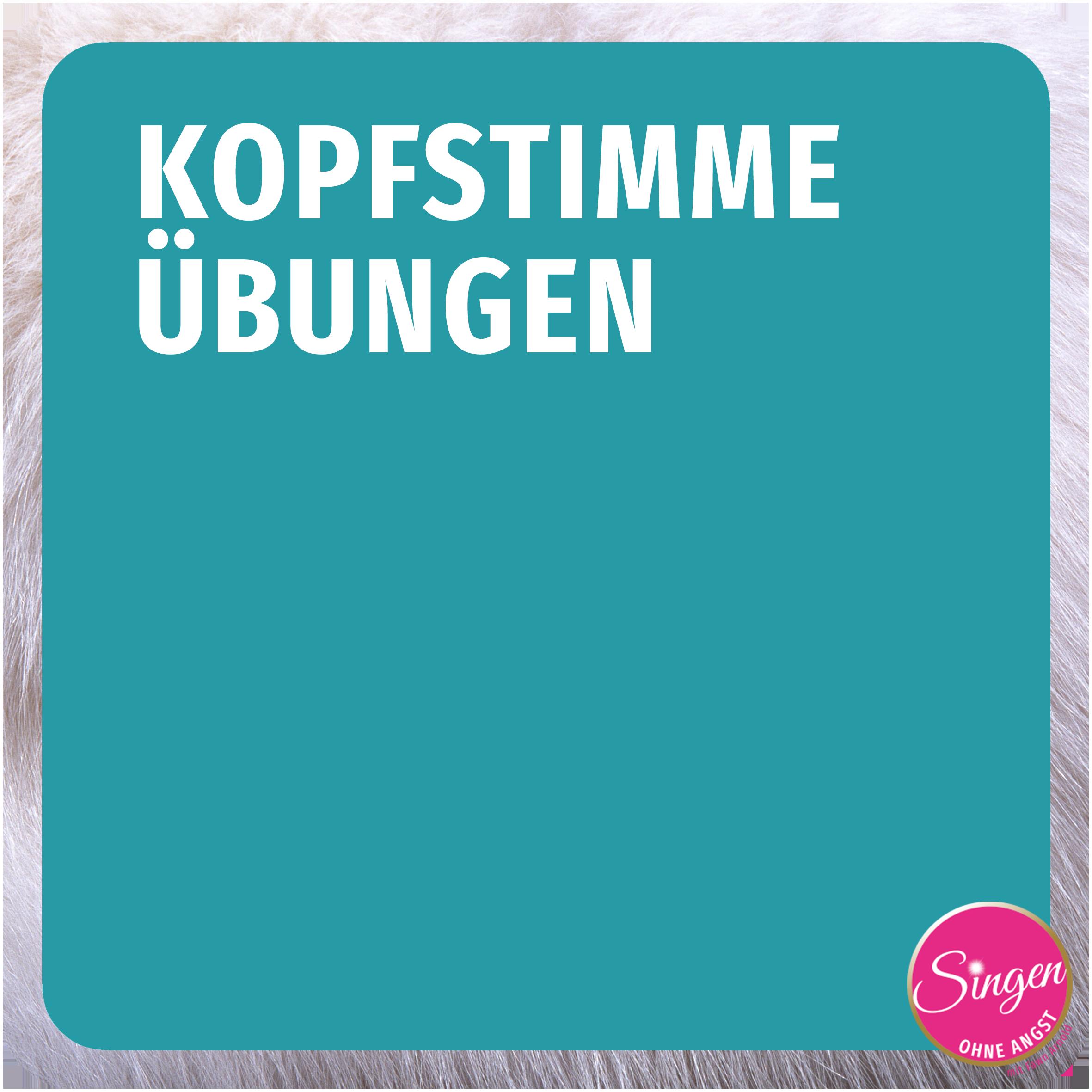 SoA_Shop_KS_Button.png