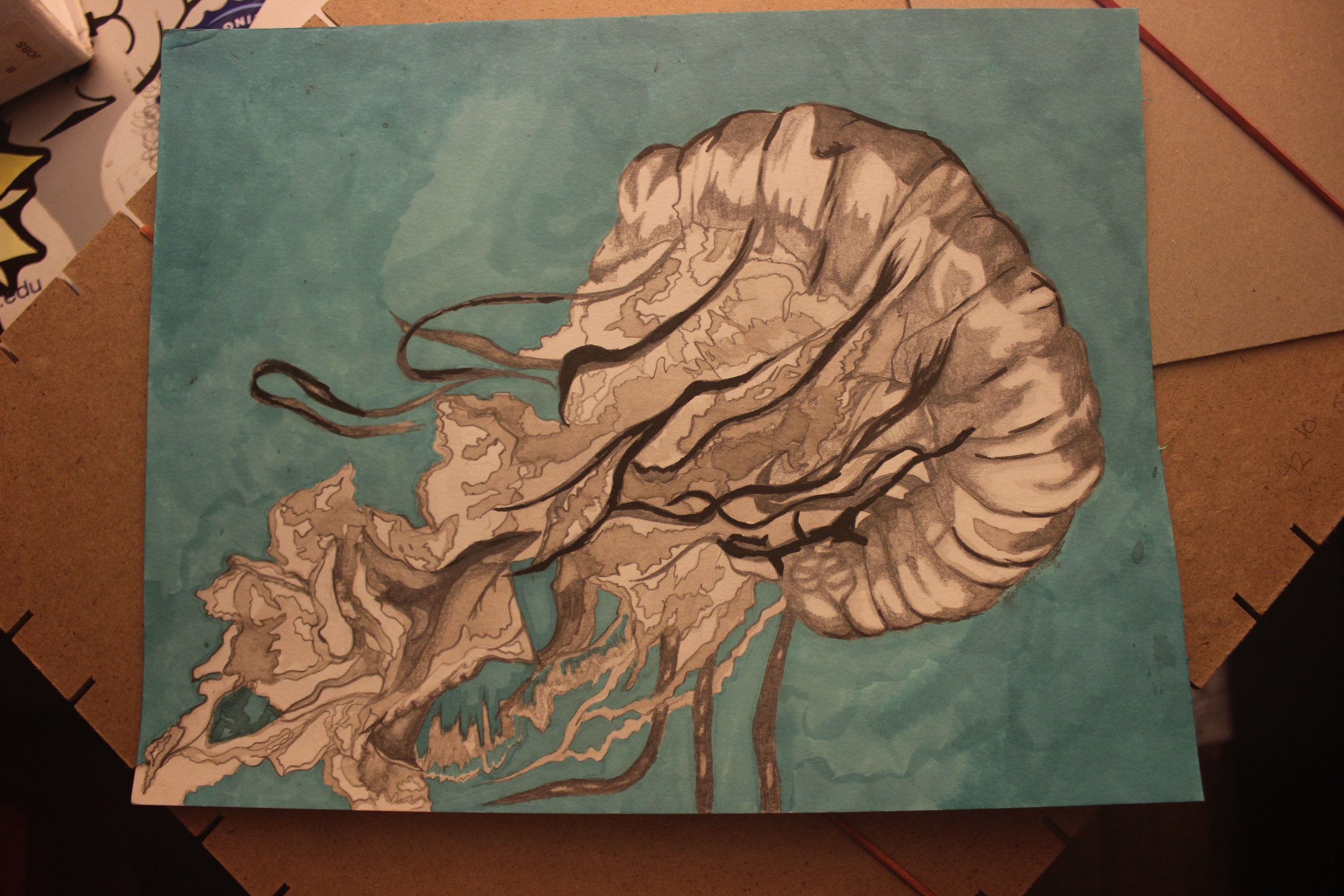 drawings(ink, ink wash, graphite, charcoal, wax, alcohol, pastel) -