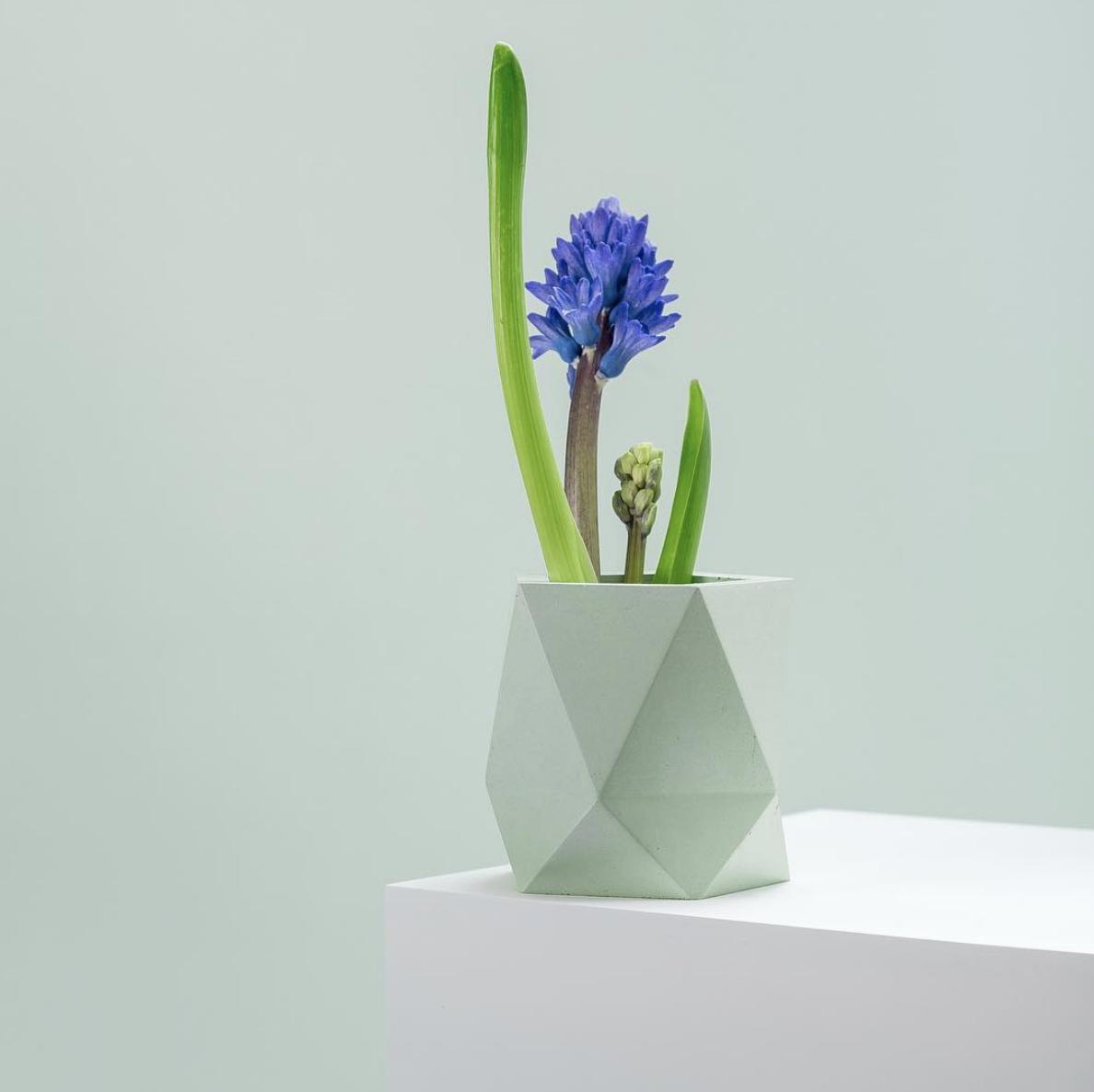 Polyhedron planter, mint color by  Frauklarer