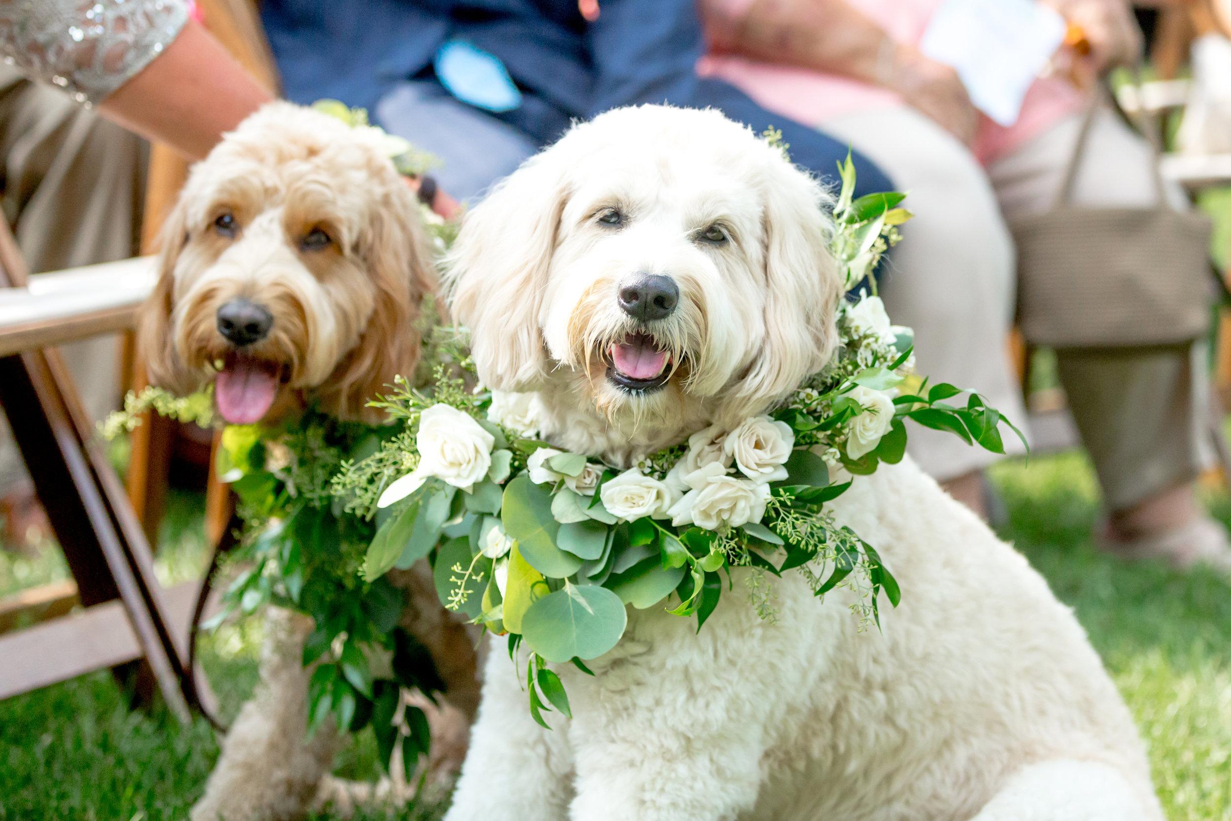 Lexington Ky Wedding Photographer-451.jpg