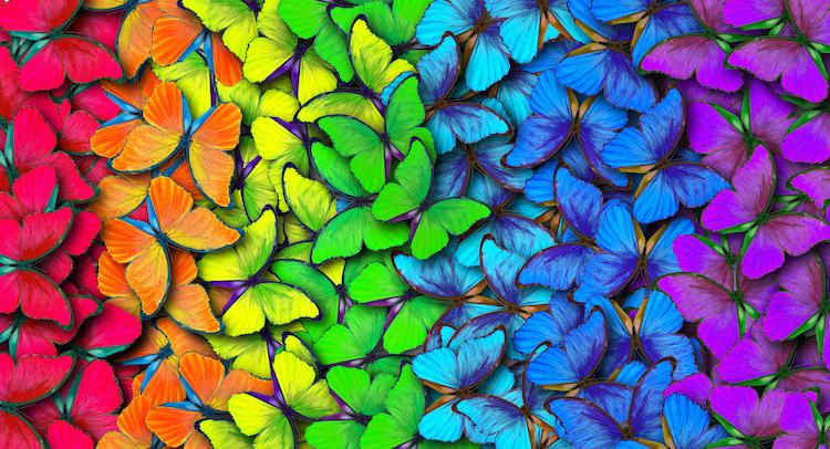 color-theory-basics.jpg