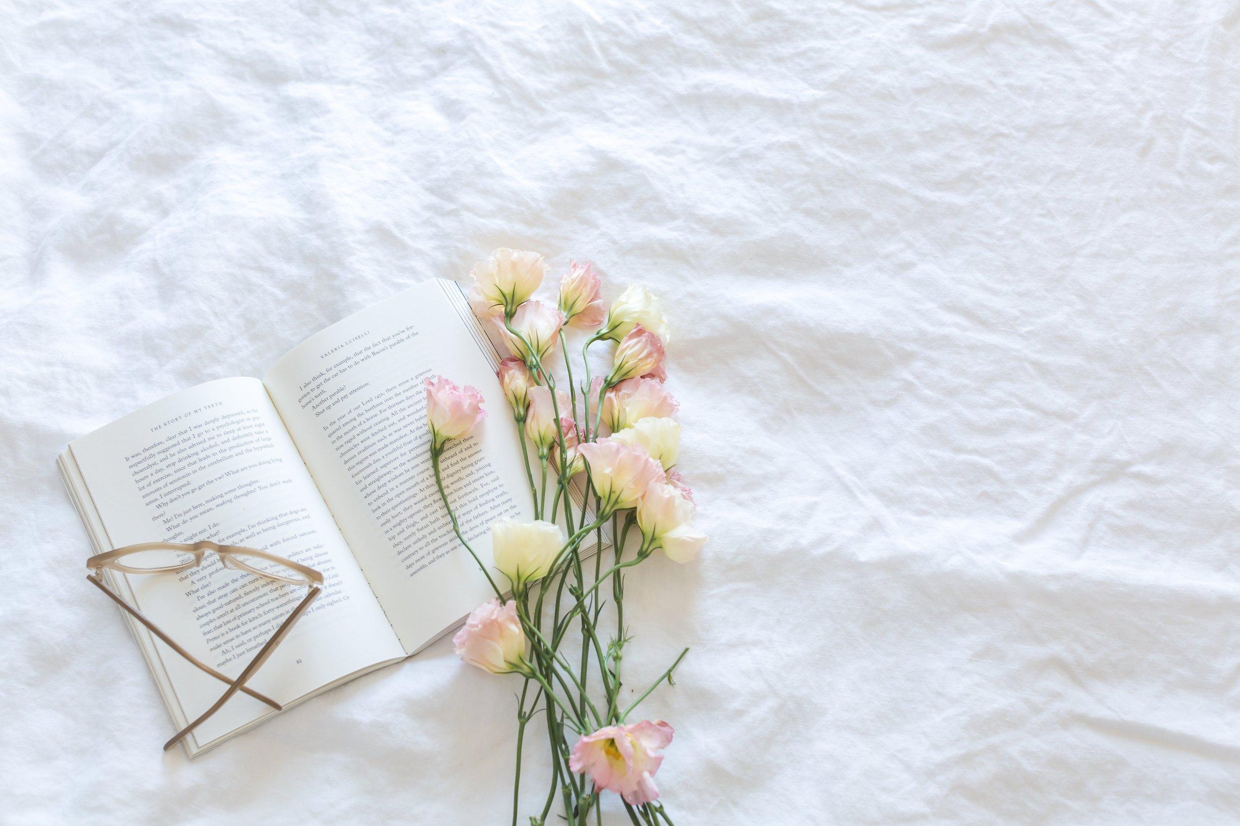 blanket-bloom-blooming-545049.jpg