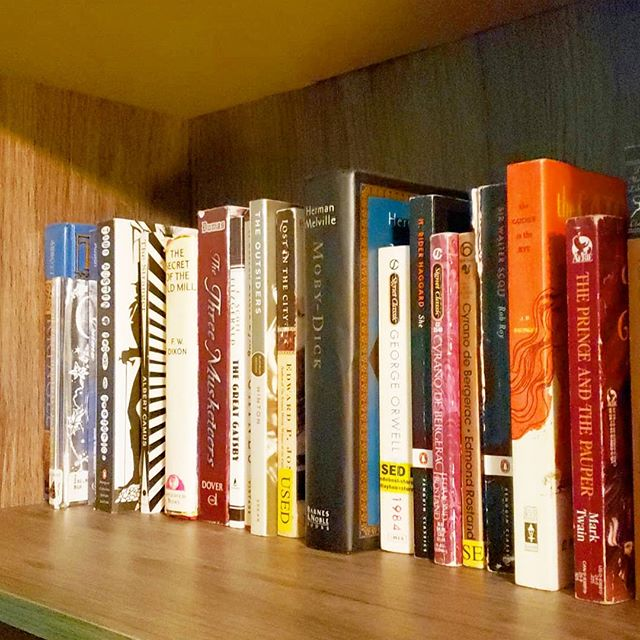 This shelf took me an hour to catalog (and not all the books on this shelf are shown). 😬 📚 And, yes, I know I said this was my next bookish project. It only took me months to get started. 😂 📂 I'm absolutely loving the My Library app to create my book database! Do you use a book catalog app? 📇 I'm thinking of making another back up copy in Google docs, though the app allows me to export my catalog in excel so that's super cool! 🗃 You working on any bookish projects of your own? What's your current read? 🤓 📖 CR: Tomb of Ancients (House of Furies #3) by Madeleine Roux 💀 P.S. - Who else is psyched for Fall reading vibes!?! Show of hands! 🖐🏻
