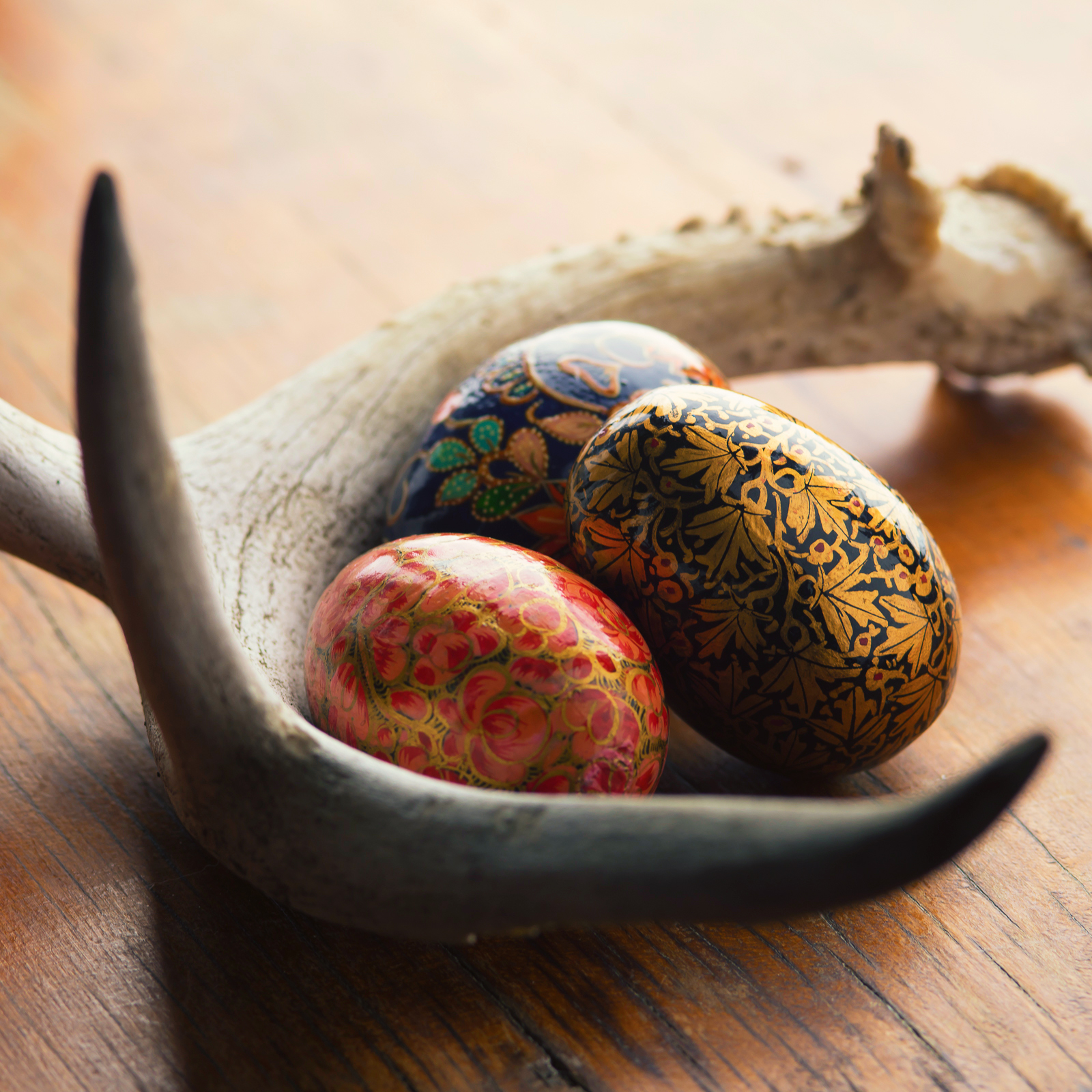 Easter Eggs and Antler - resized.jpg