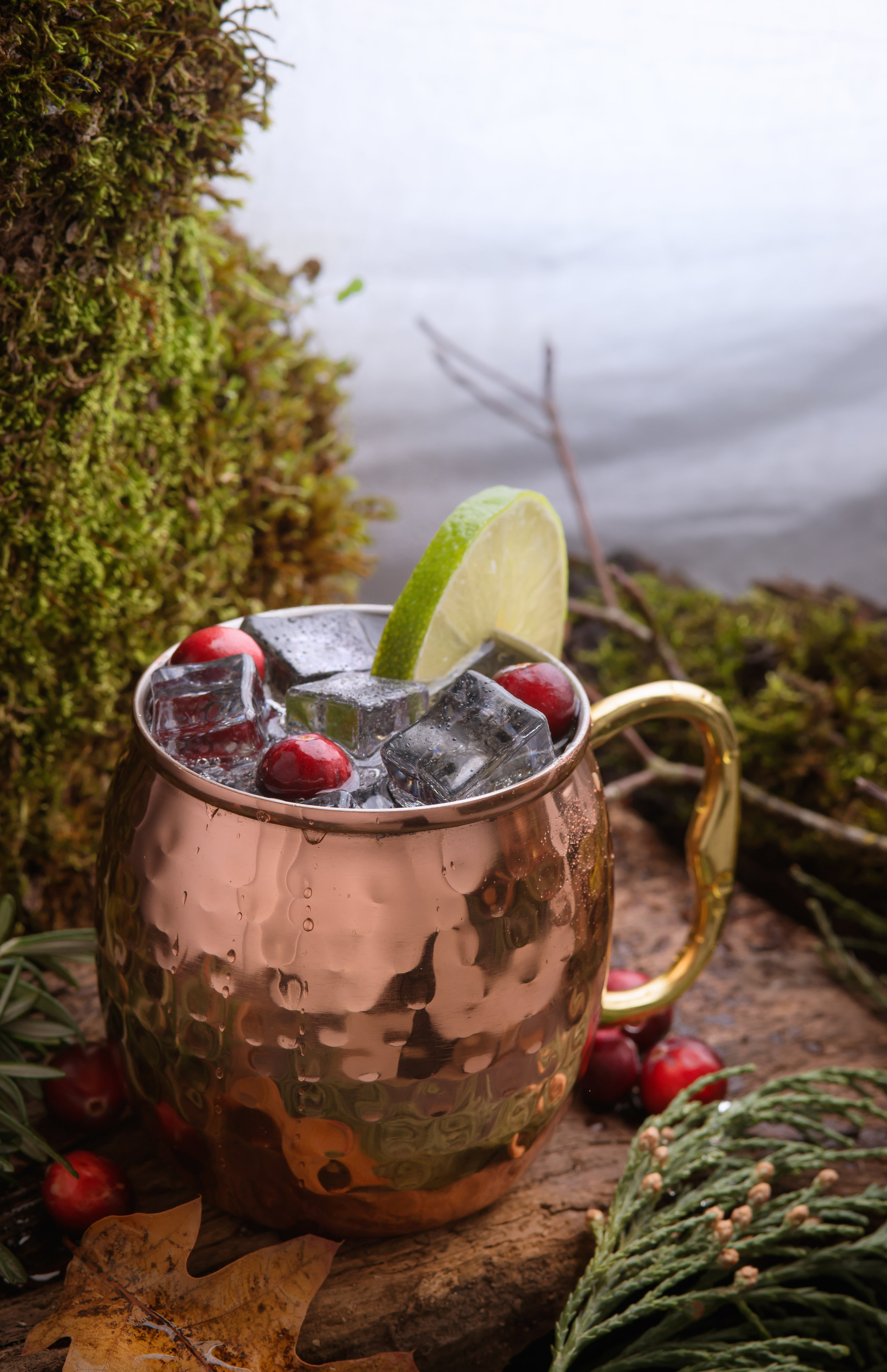 20190101LIRFinals-7-20190101Vodka_Mule_Coast_Range-29-01229-Edit.jpg
