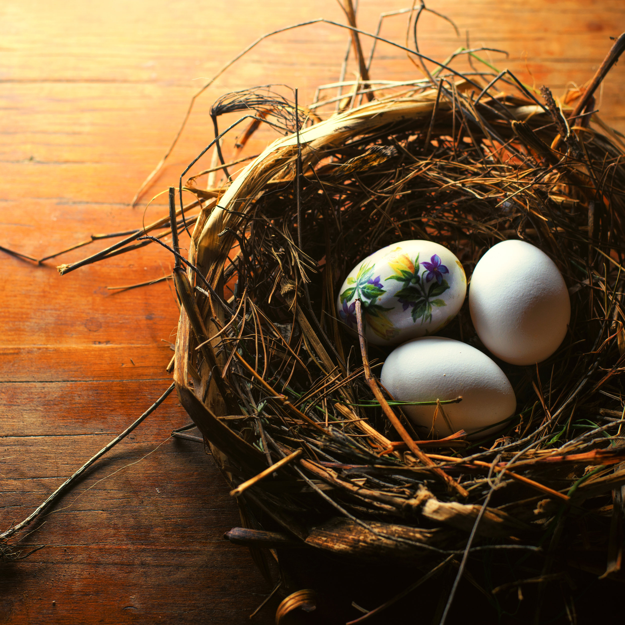 Nest Eggs Color Graded (full size).jpg