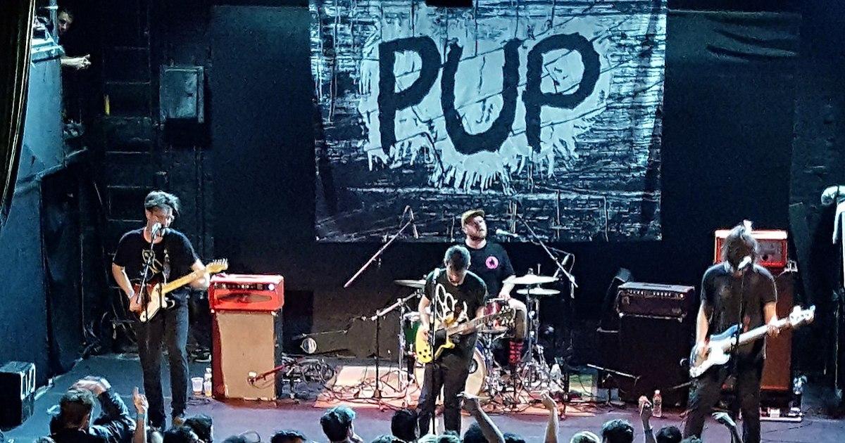 PUP band.jpg