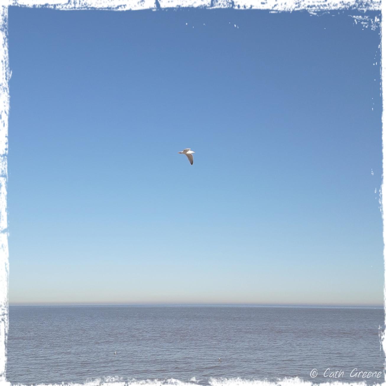 A Bookish Life | Life's a Beach |Cath Greene