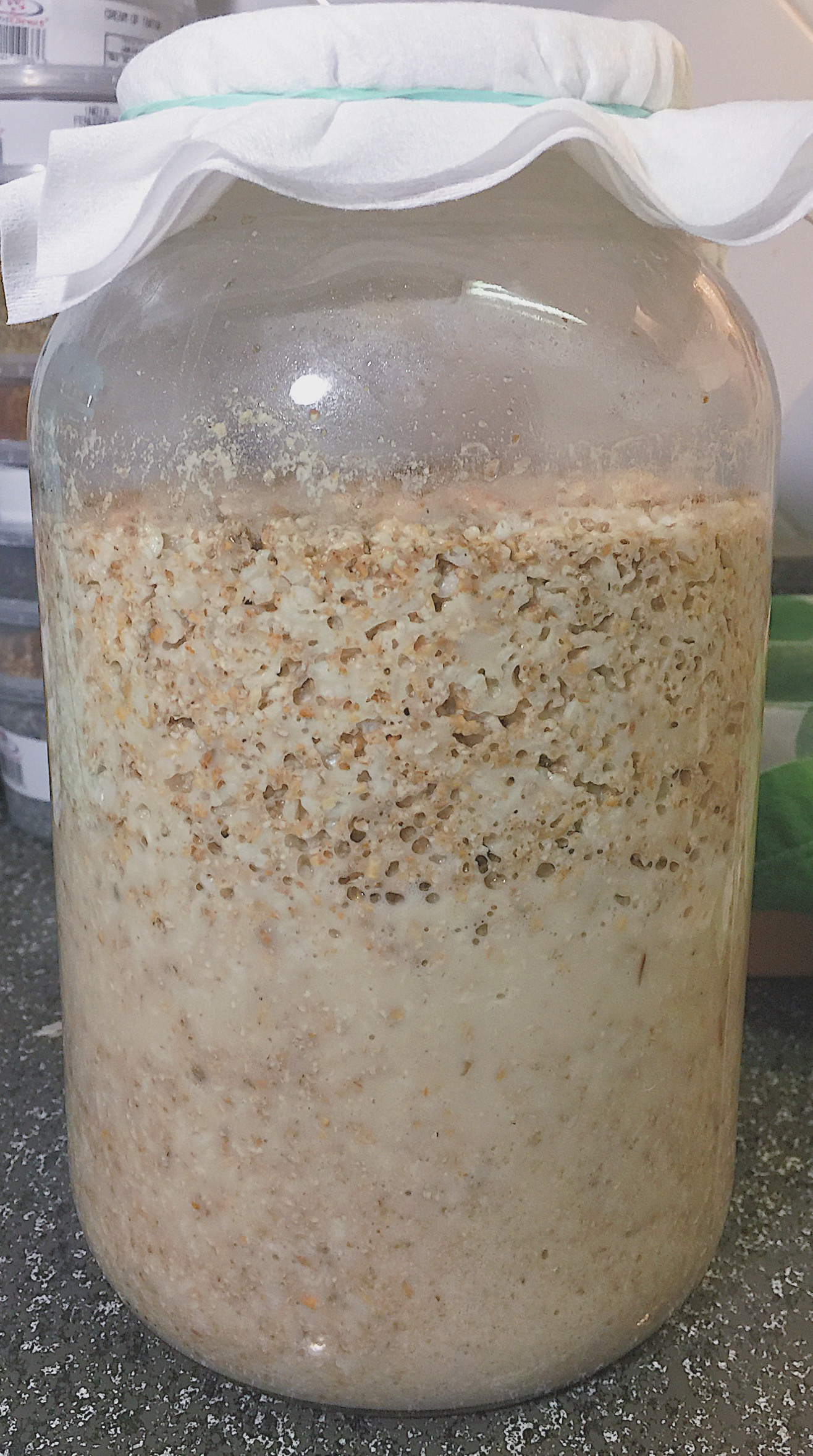 Magic in the works. - Makgeolli in the early stages is very active and fermentation should be apparent.