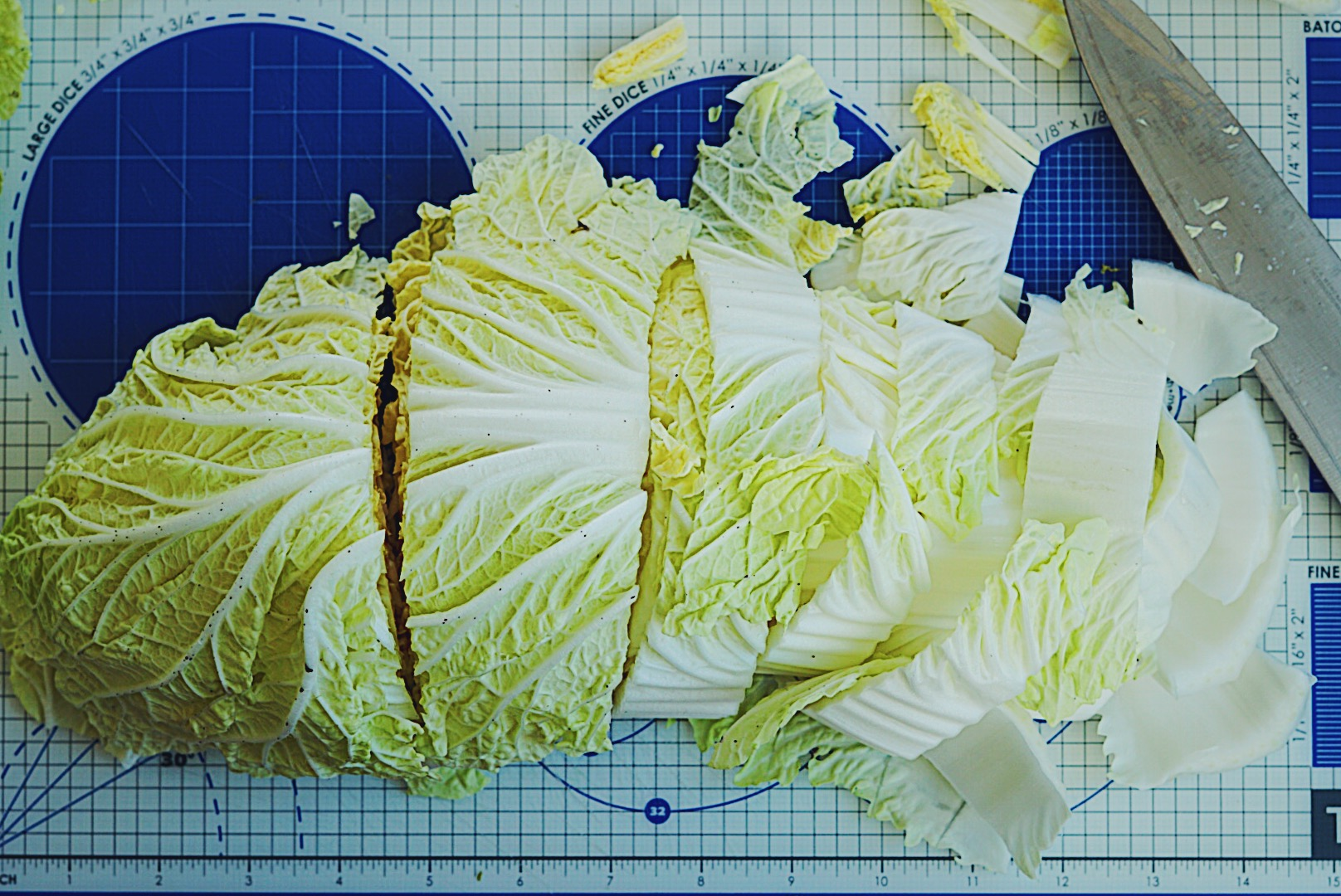 Notice how my cuts at the tough base of the kimchi is smaller than the leafy tops. This is to ensure more even brining of the cabbage.
