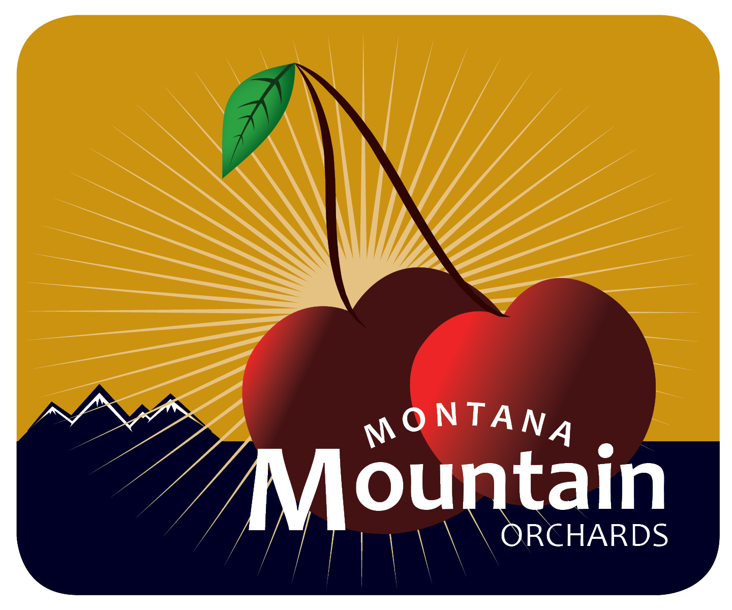 MT Mountain logo.jpg