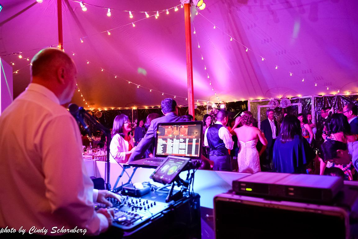 virginia_vineyard_wedding_028.jpg