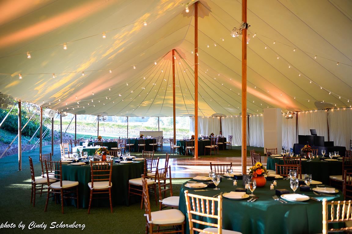 virginia_vineyard_wedding_008.jpg