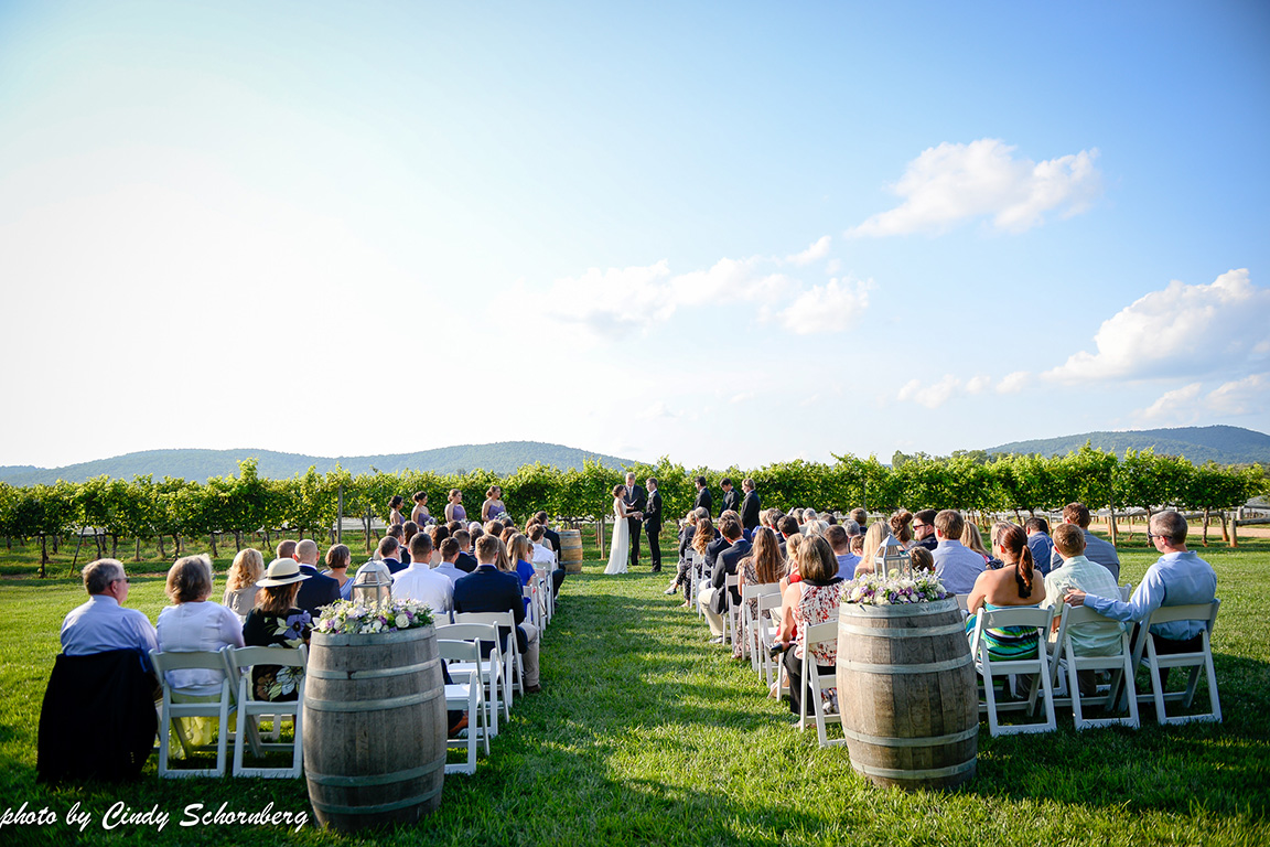 vineyard_weddings_Charlottesville_Virginia_002.jpg