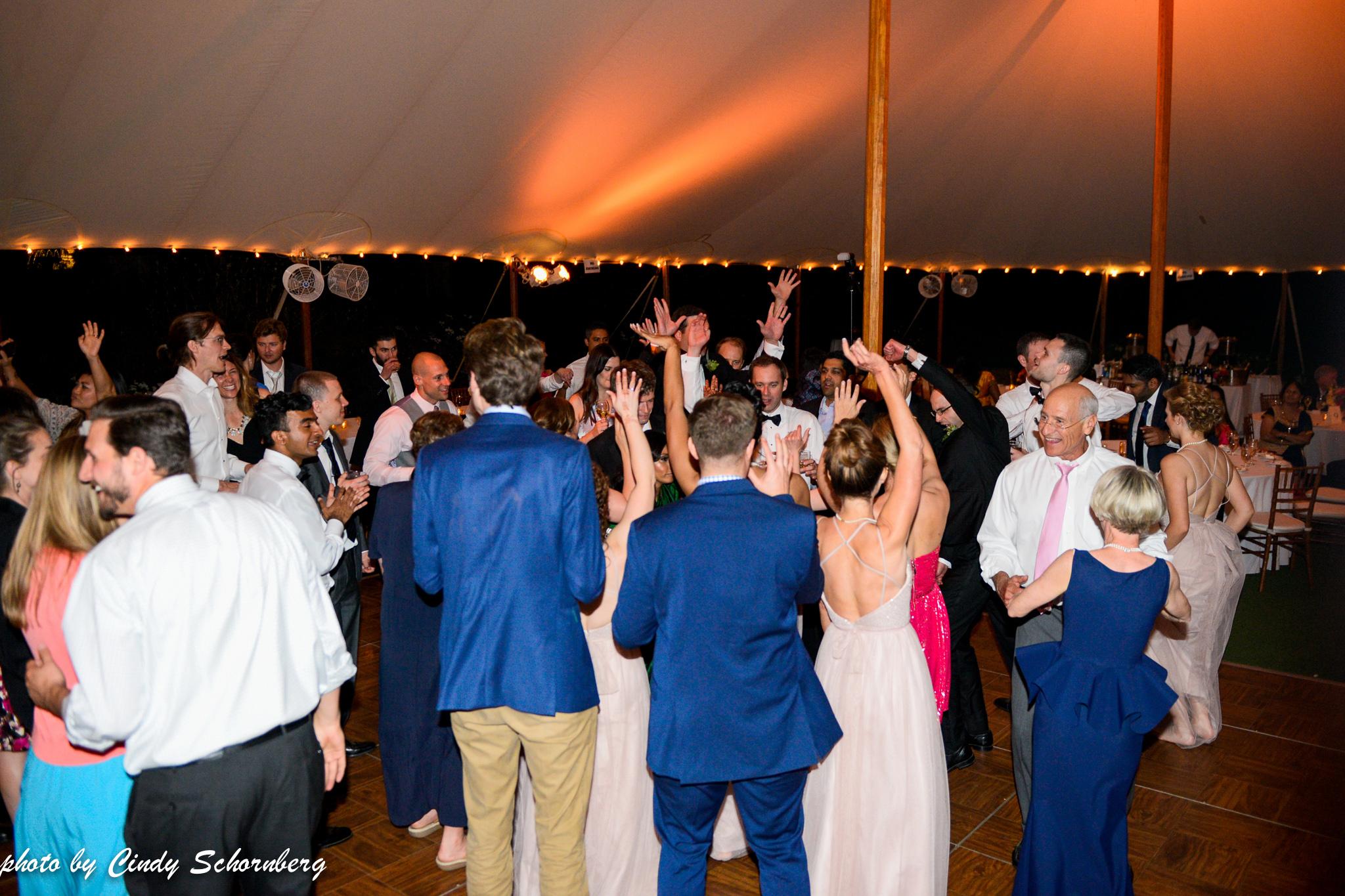 vineyard_weddings_Charlottesville_Virginia_013.jpg