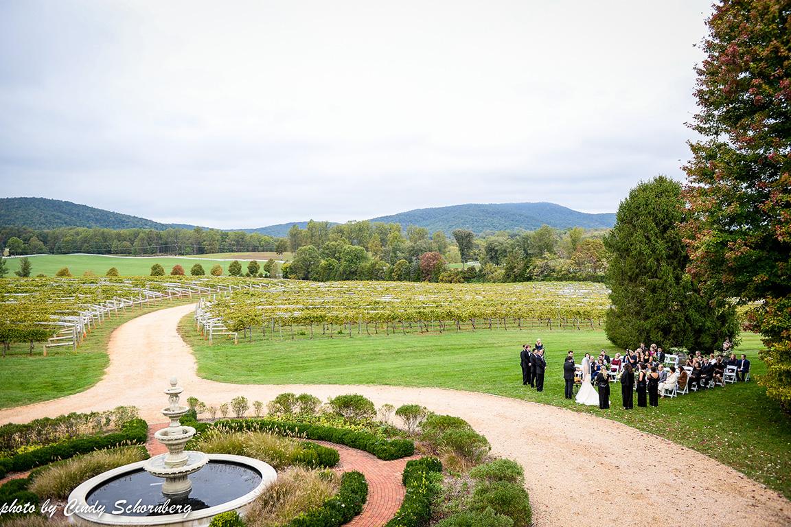 virginia_vineyard_wedding_06.jpg