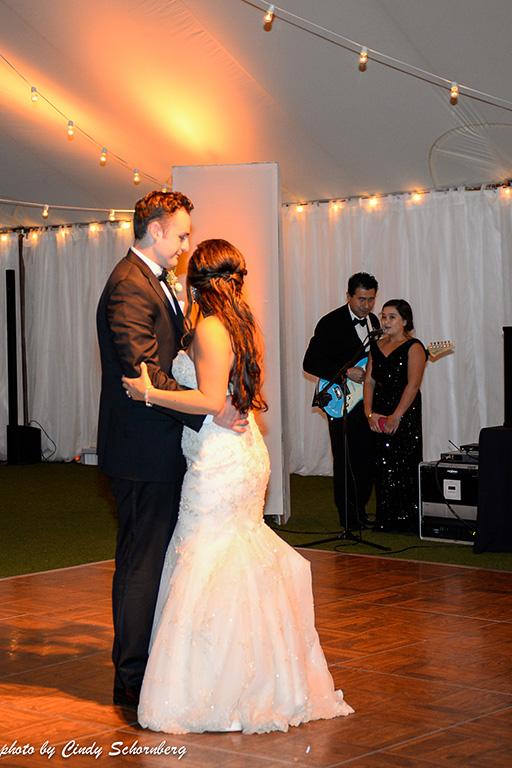 virginia_vineyard_wedding_16.jpg