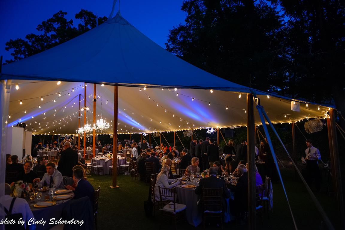 virginia_vineyard_wedding15.jpg