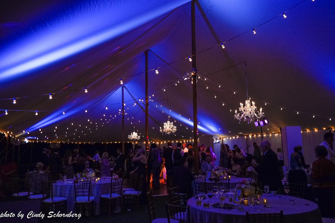 virginia_vineyard_wedding19.jpg