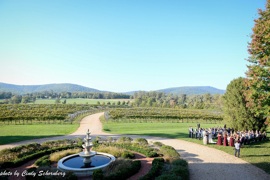 virginia_vineyard_wedding_005.jpg