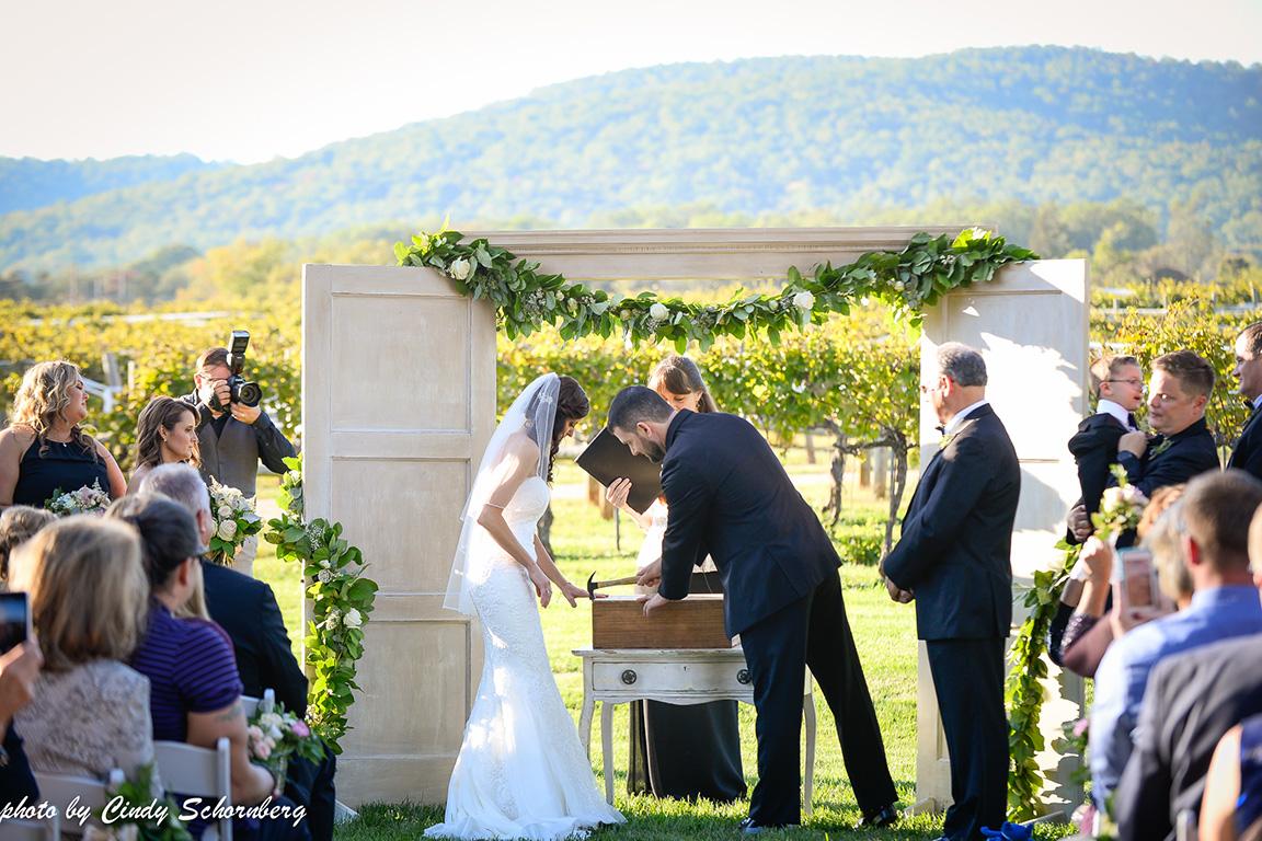 virginia_vineyard_wedding_010.jpg