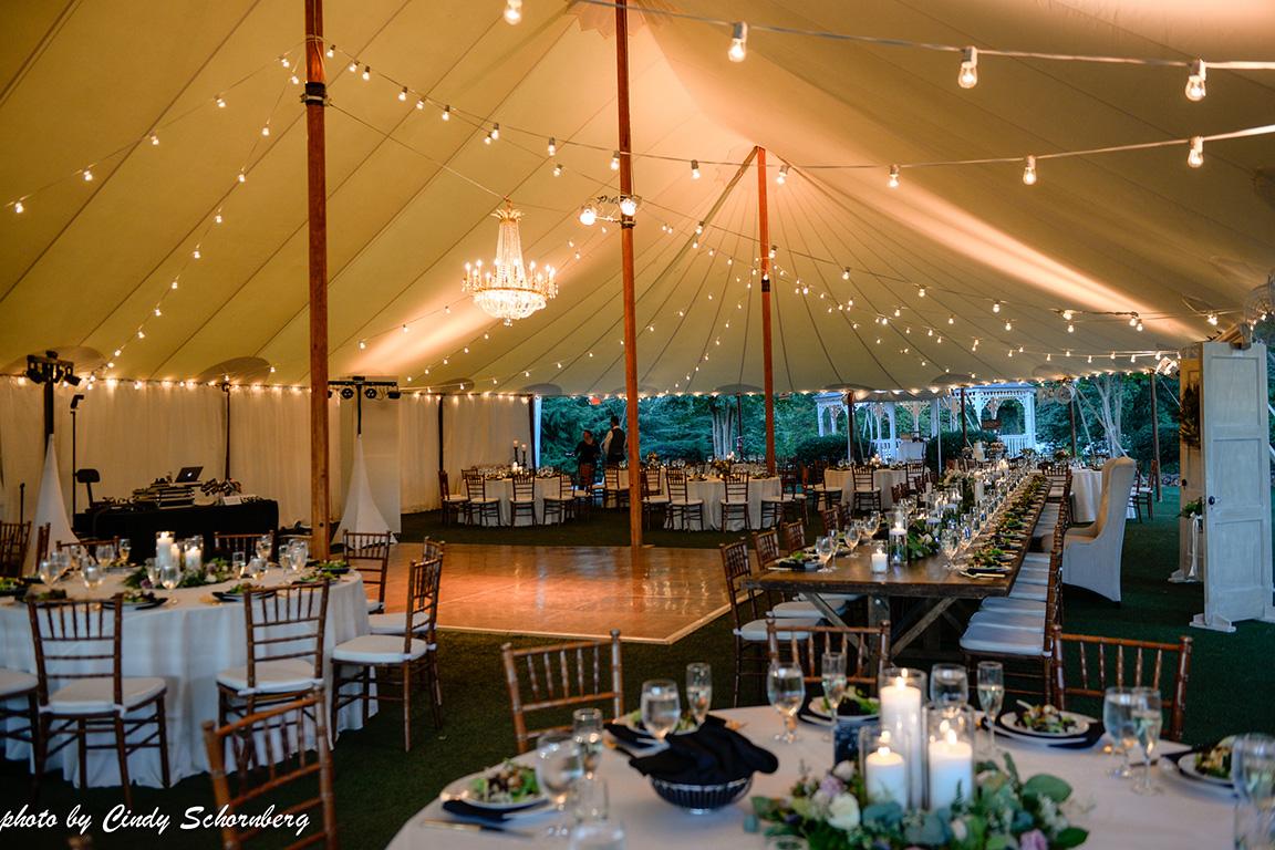 virginia_vineyard_wedding_019.jpg