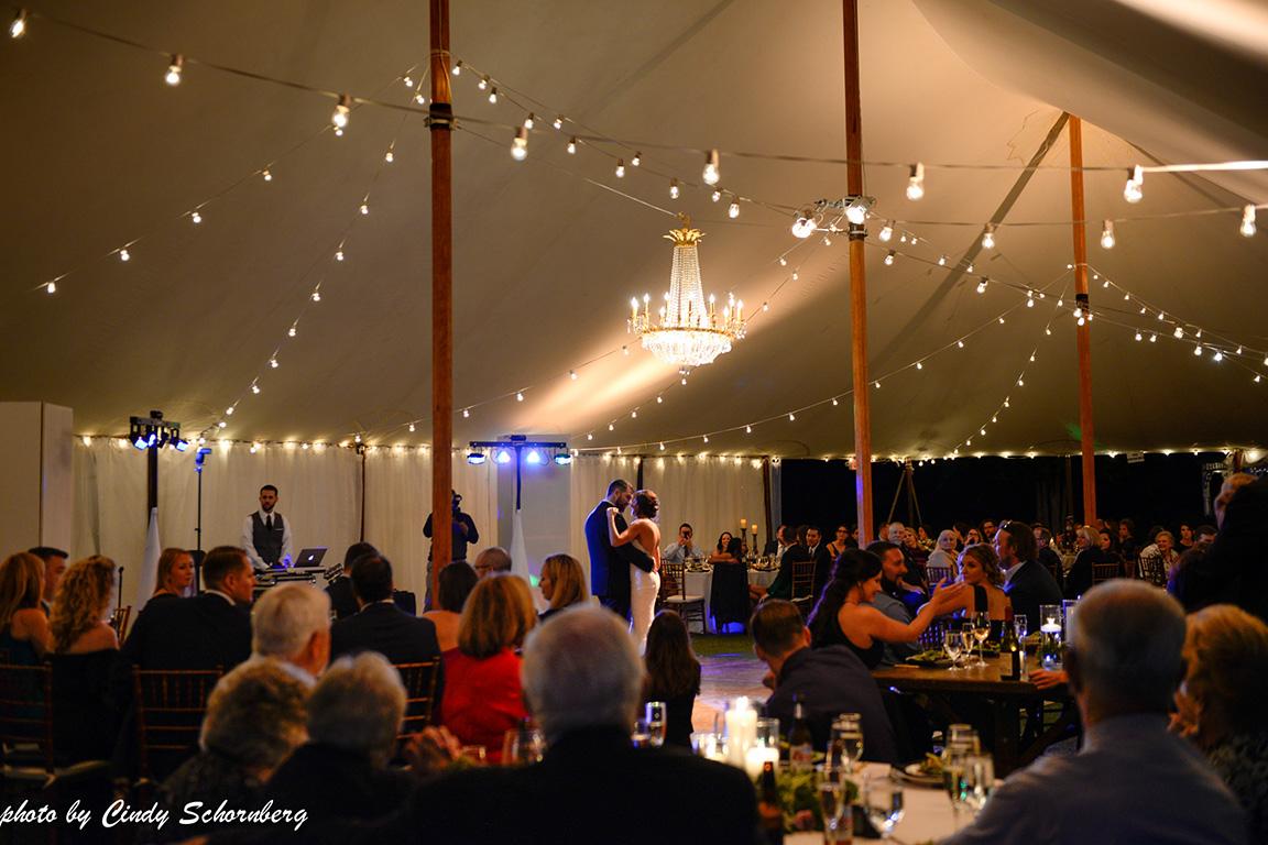 virginia_vineyard_wedding_022.jpg