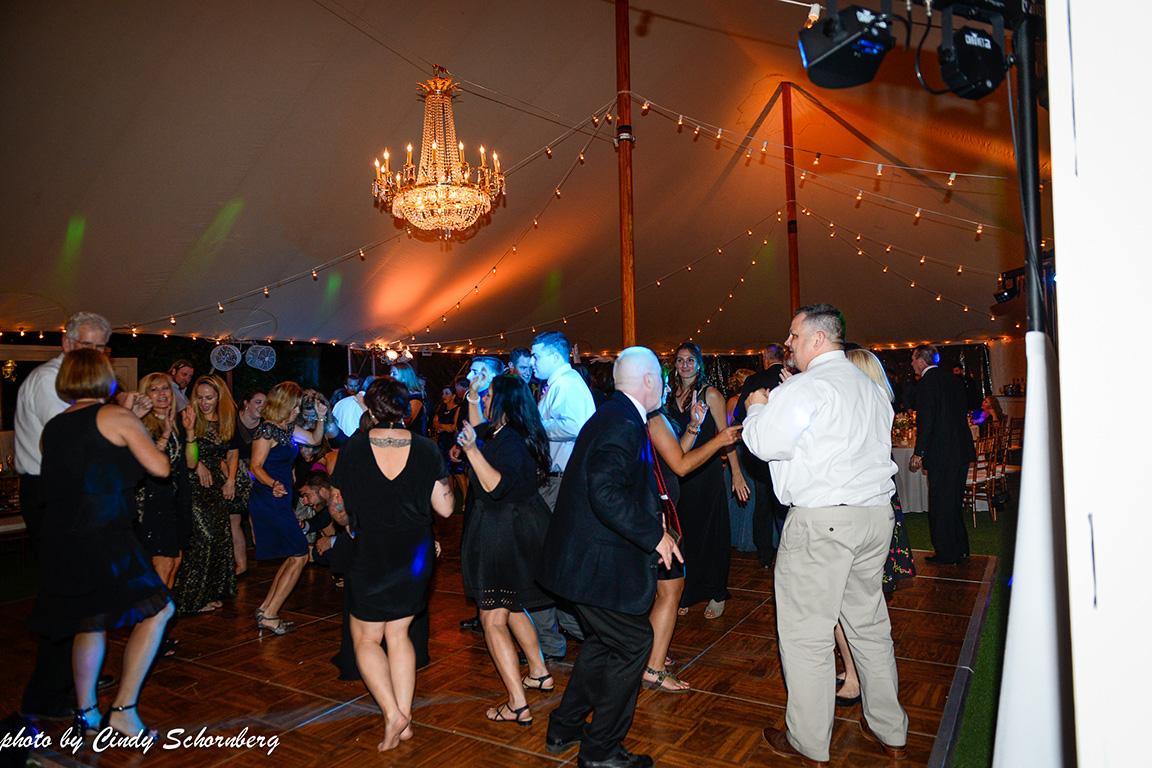 virginia_vineyard_wedding_023.jpg