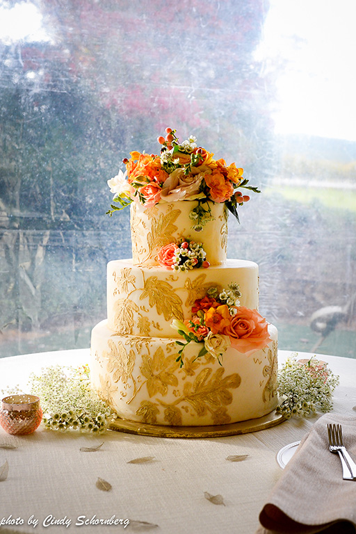 virgina_vineyard_wedding_005.jpg