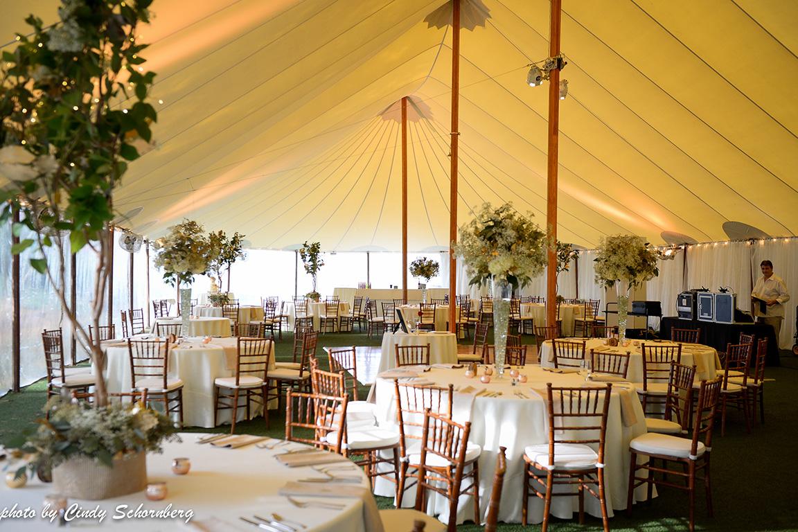 virgina_vineyard_wedding_004.jpg
