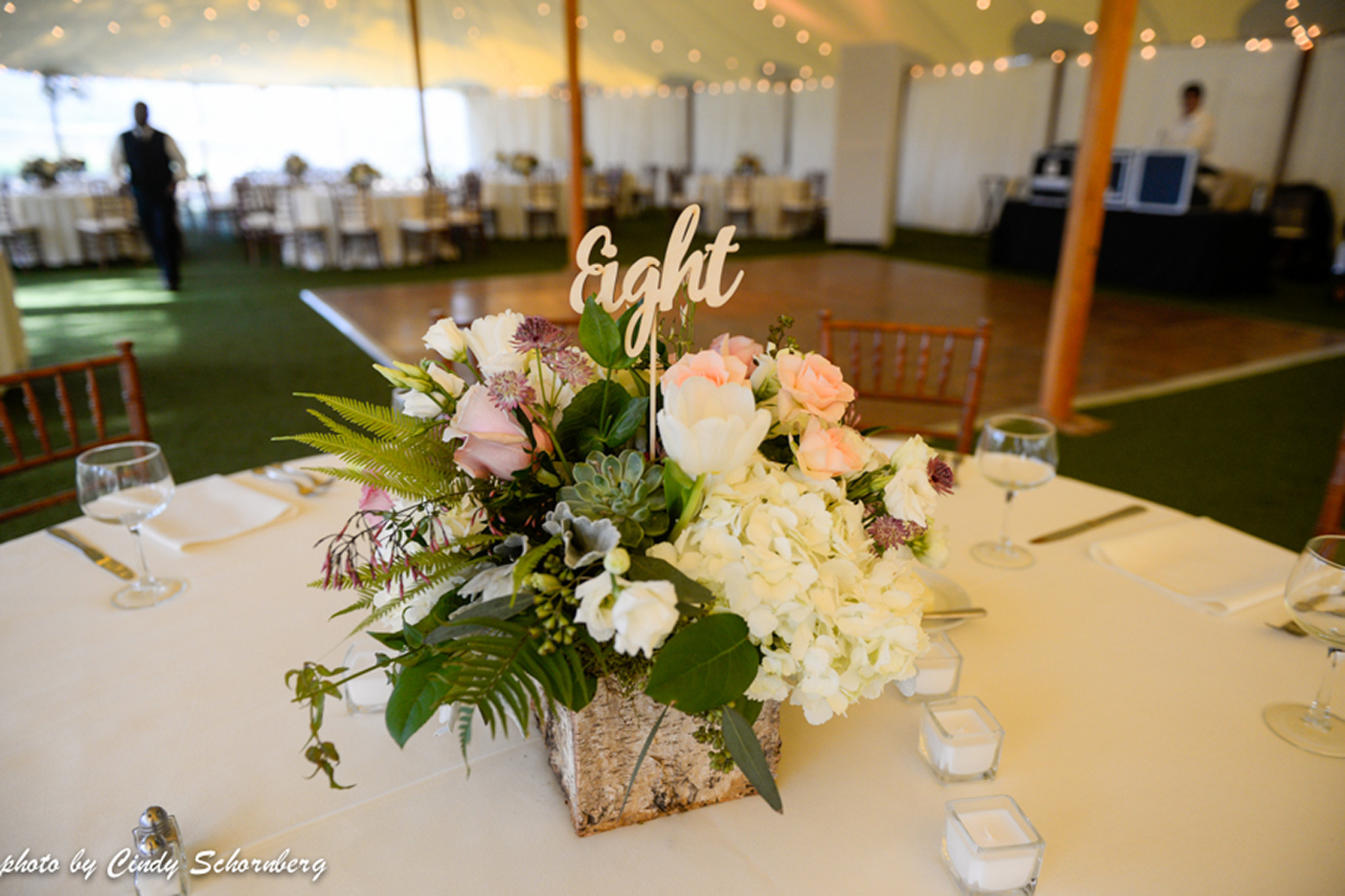 vineyard_weddings_Charlottesville_Virginia_005 2.jpg