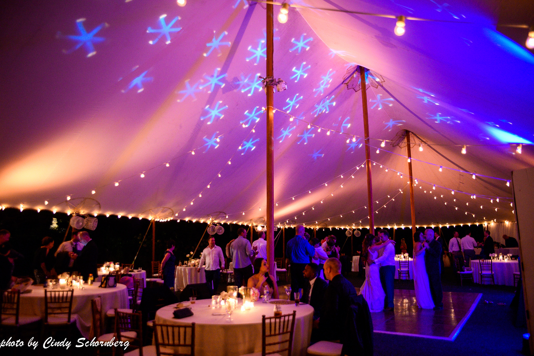 vineyard_weddings_Charlottesville_Virginia_020.jpg