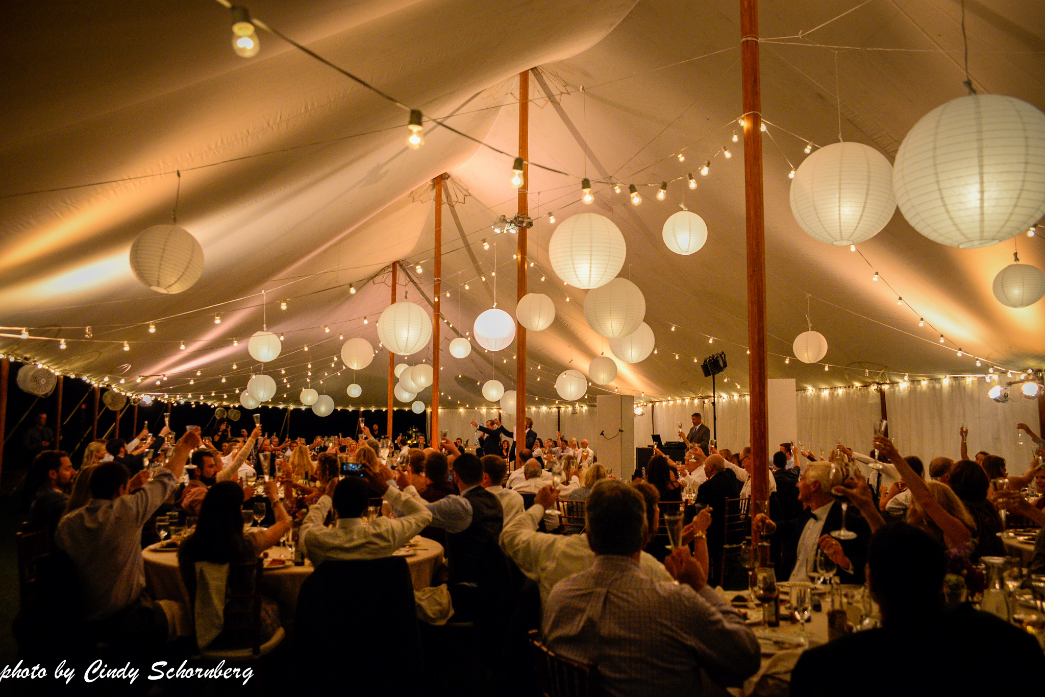 vineyard_weddings_Charlottesville_Virginia_019.jpg