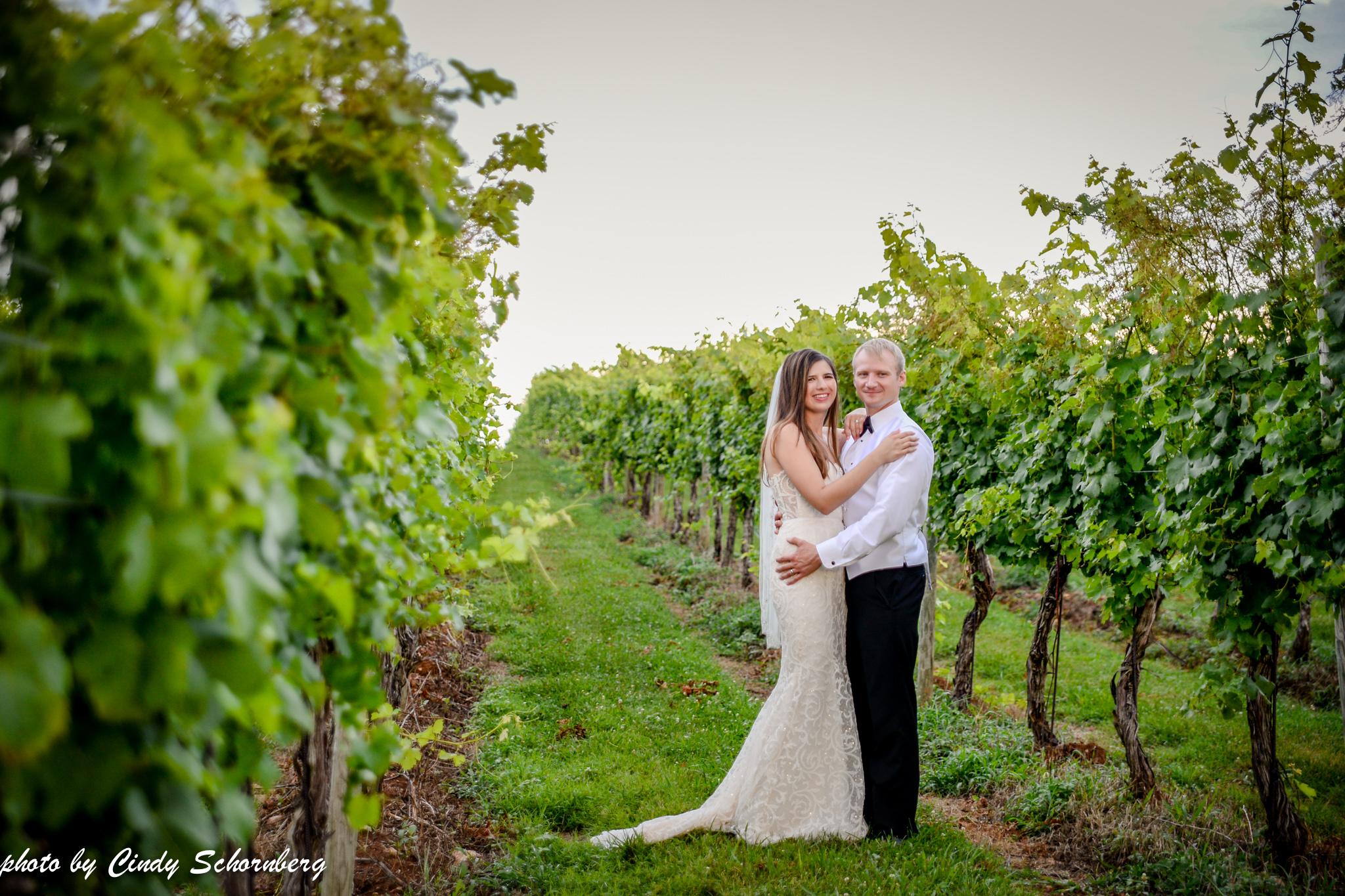 vineyard_weddings_Charlottesville_Virginia_0026.jpg