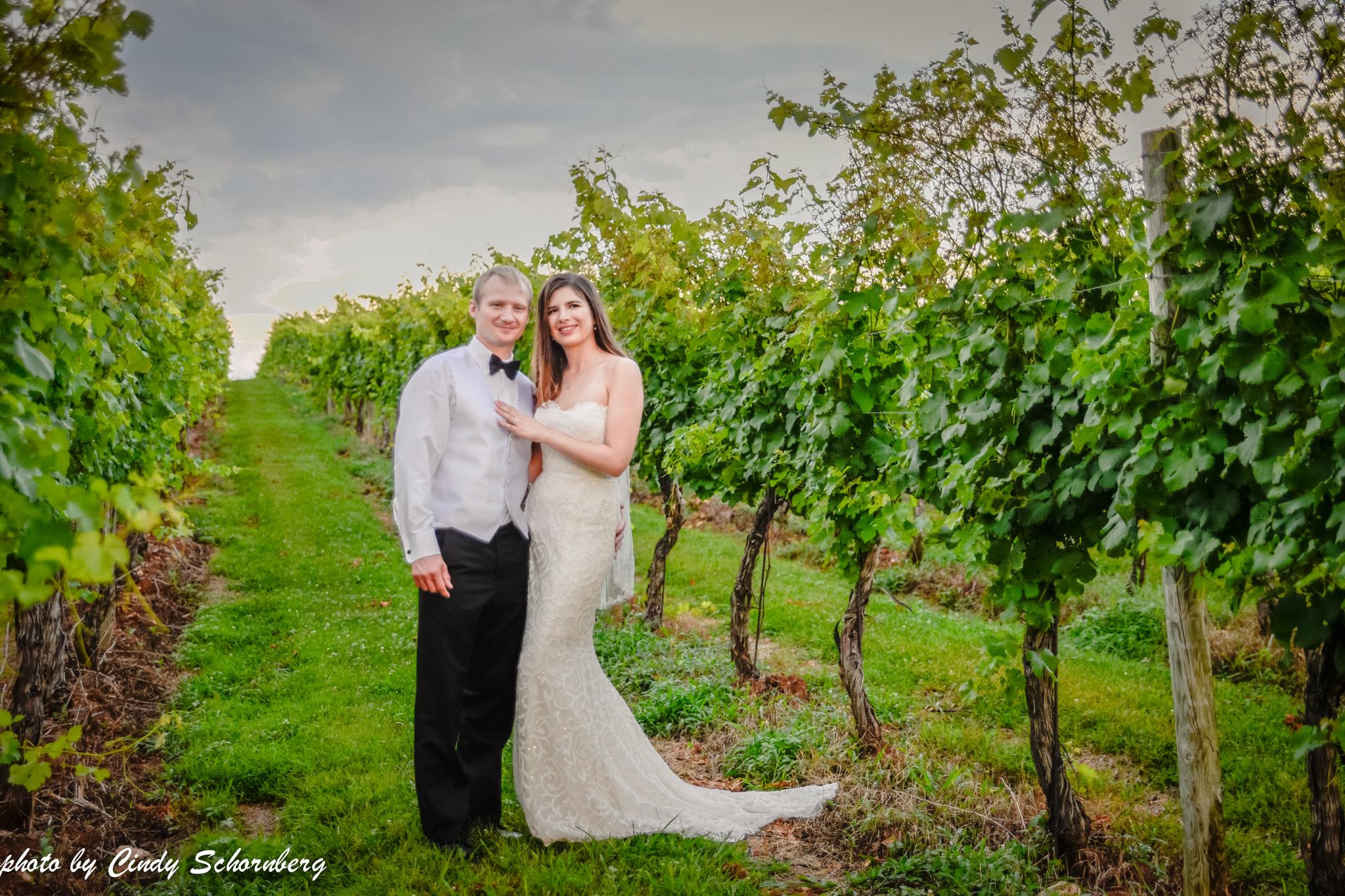 vineyard_weddings_Charlottesville_Virginia_0025.jpg
