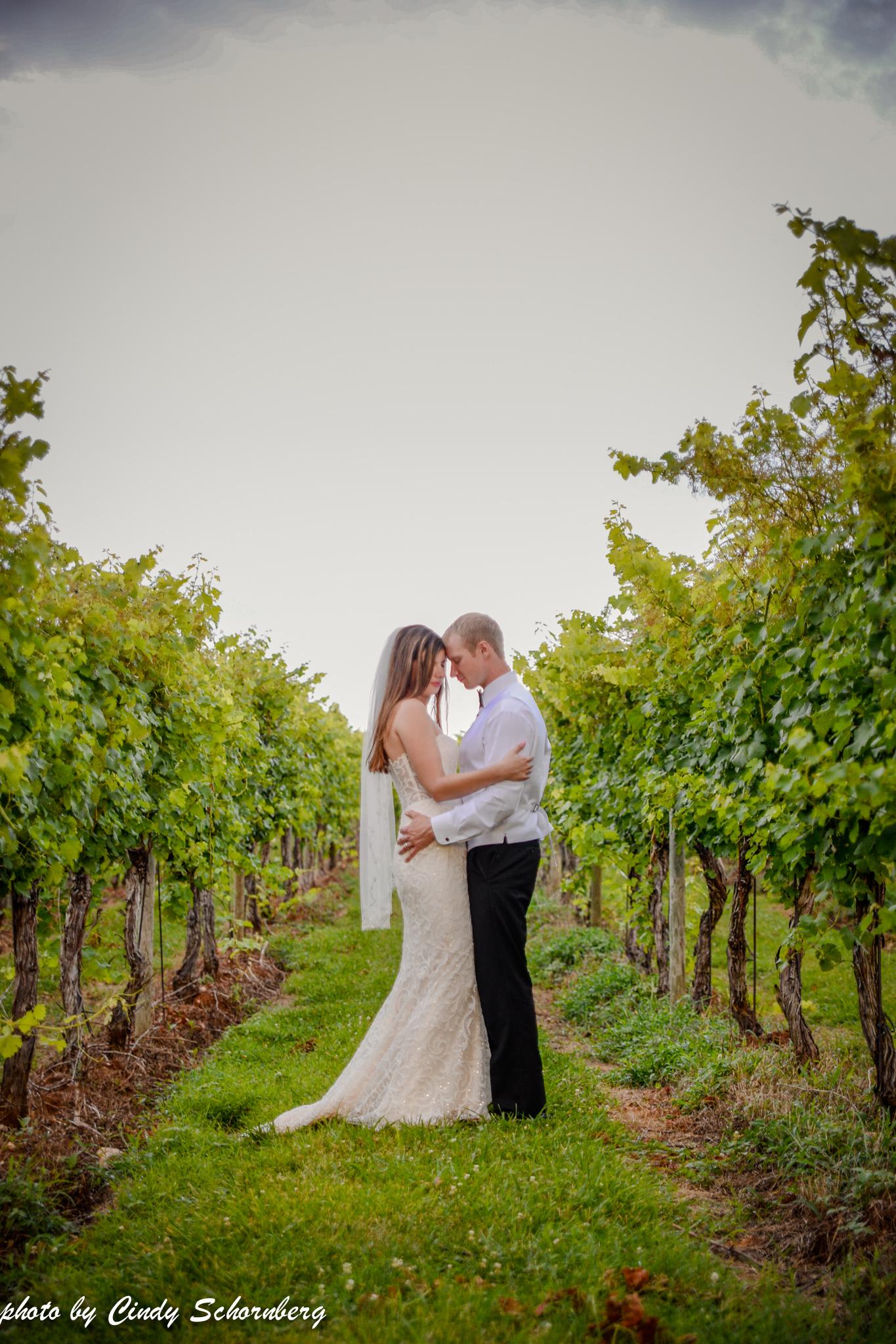 vineyard_weddings_Charlottesville_Virginia_0027.jpg