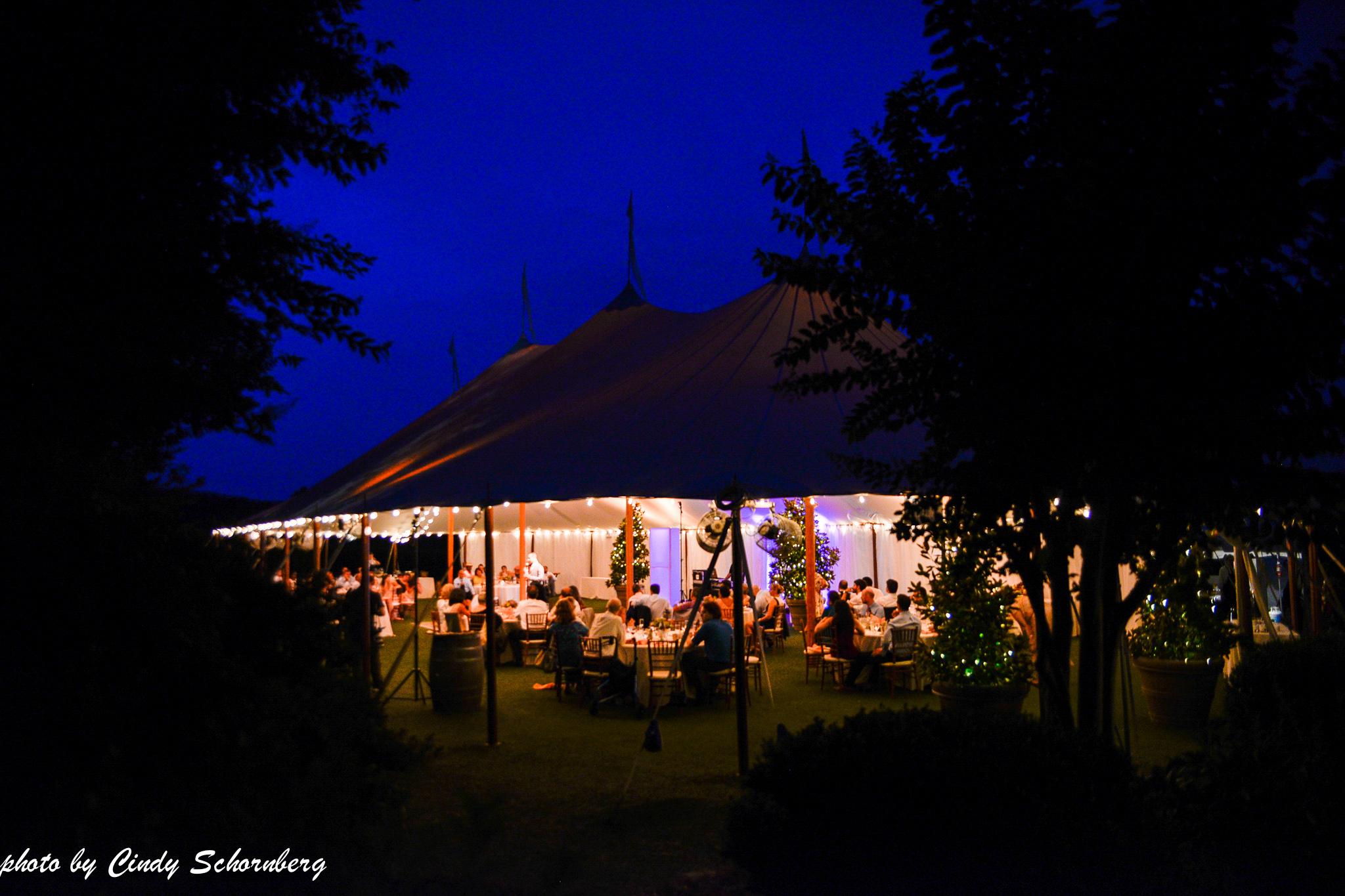 vineyard_weddings_Charlottesville_Virginia_0029.jpg