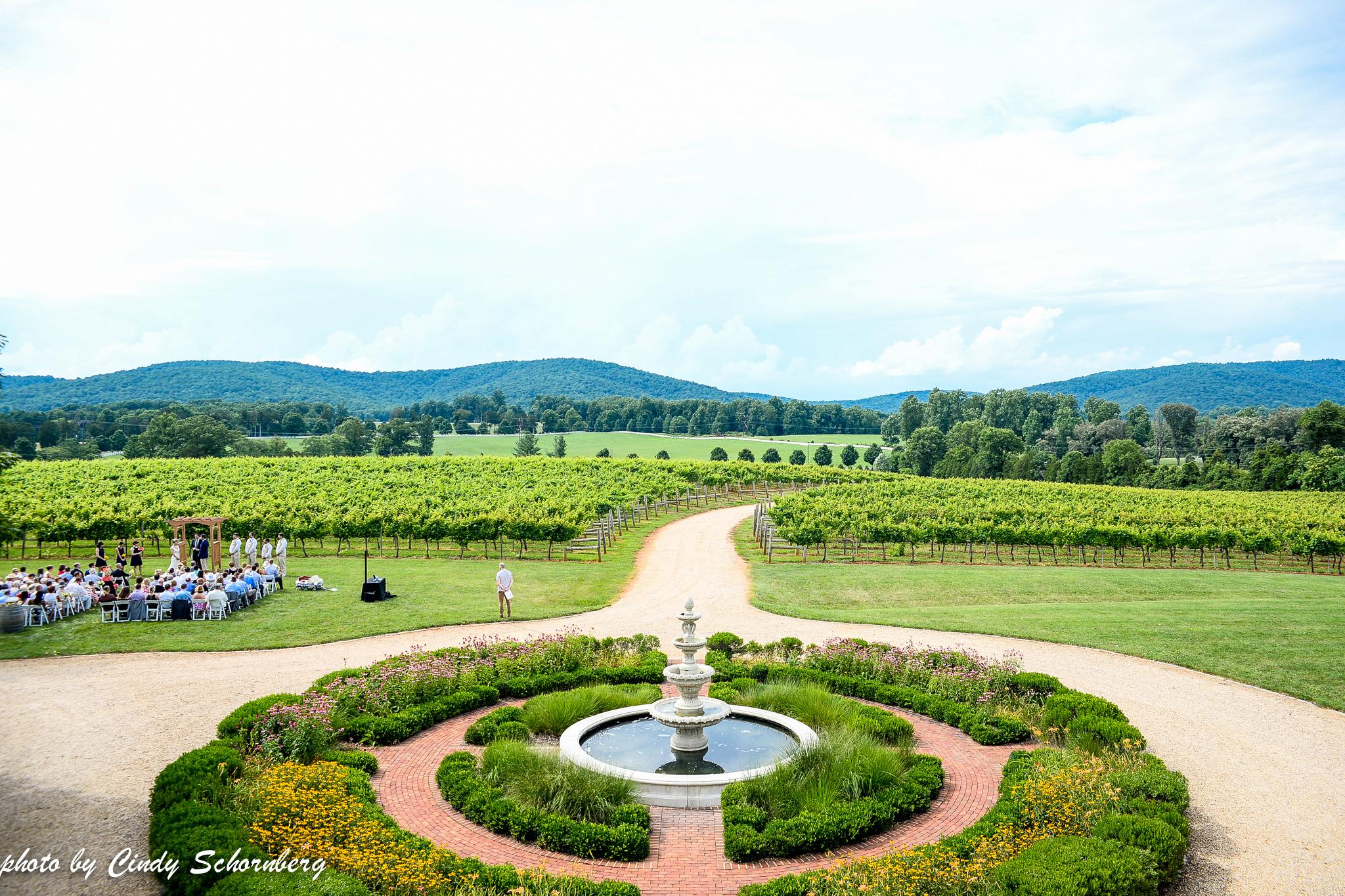 vineyard_wedding_Charlottesville_0002.jpg
