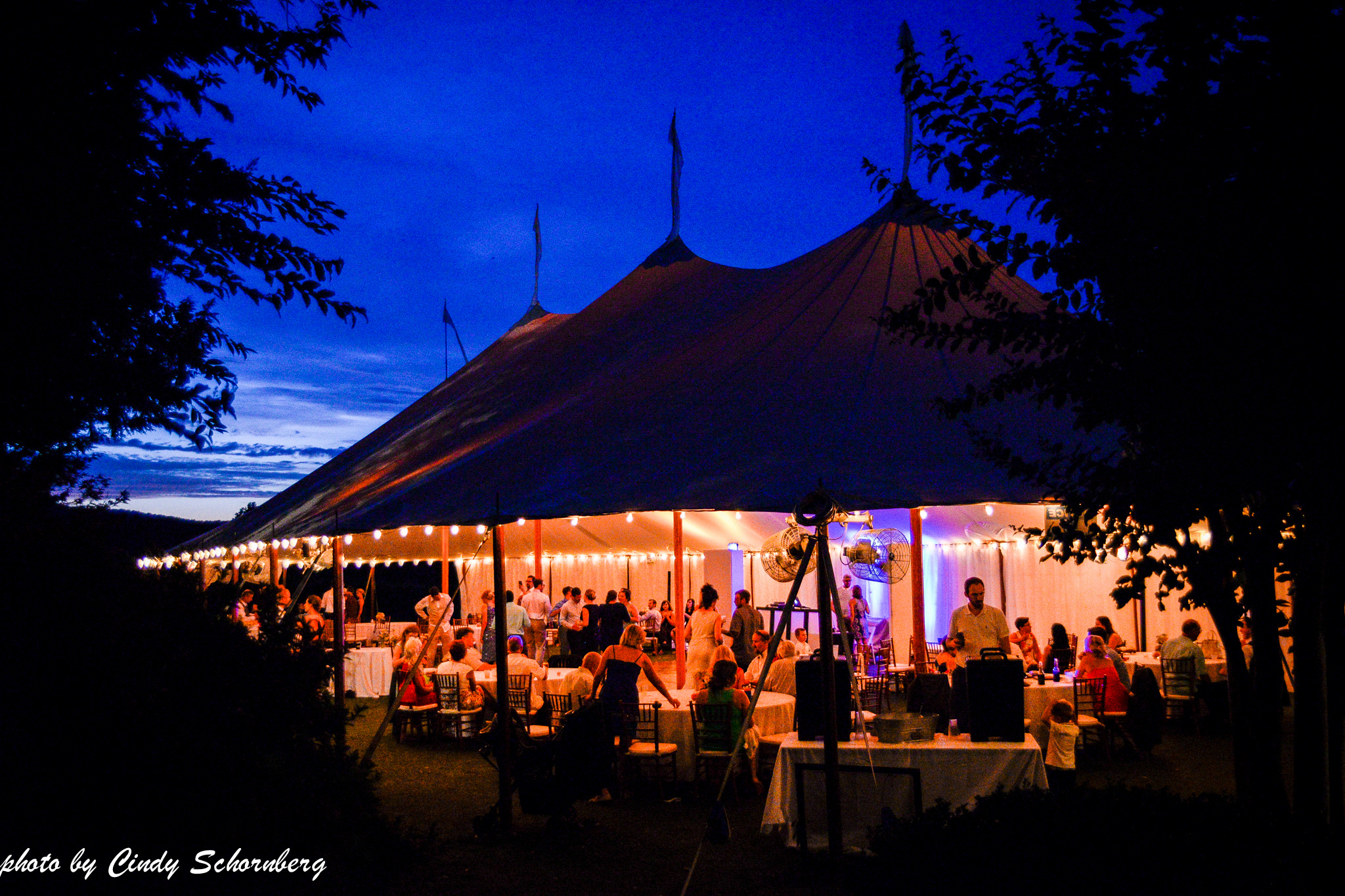 vineyard_wedding_Charlottesville_0015.jpg