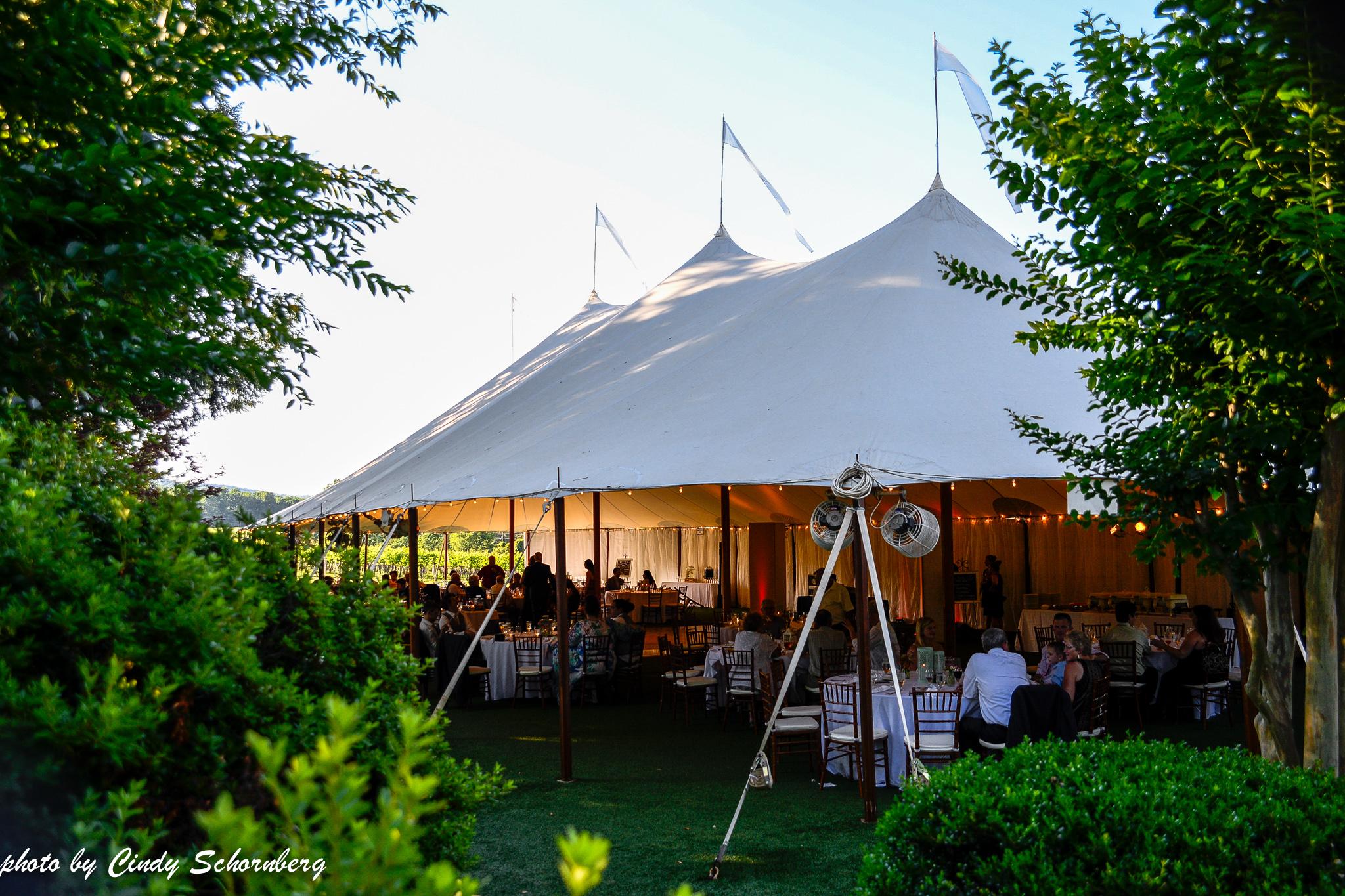 vineyard_weddings_Charlottesville_Virginia_0011.jpg