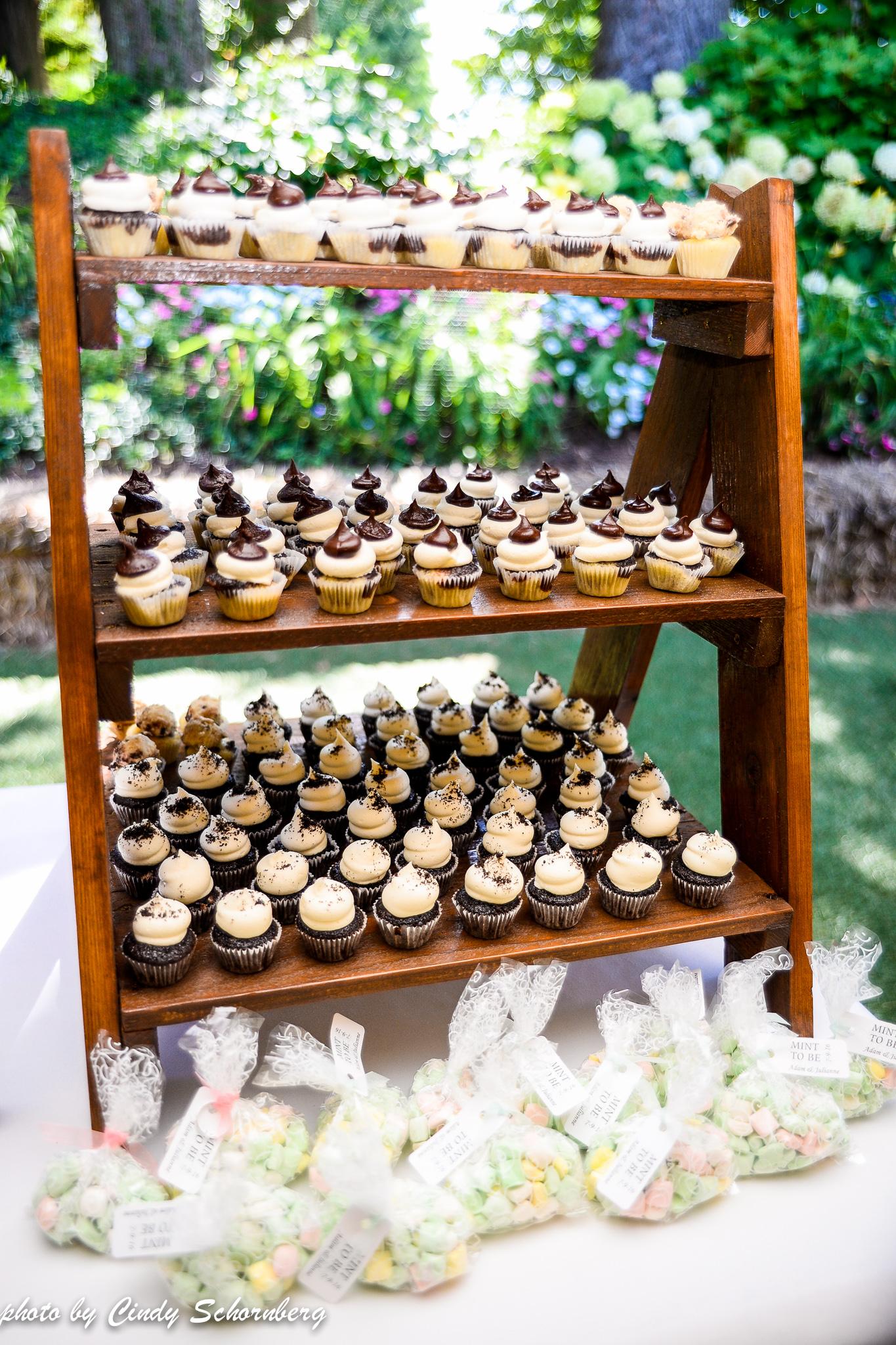vineyard_weddings_Charlottesville_Virginia_0006.jpg
