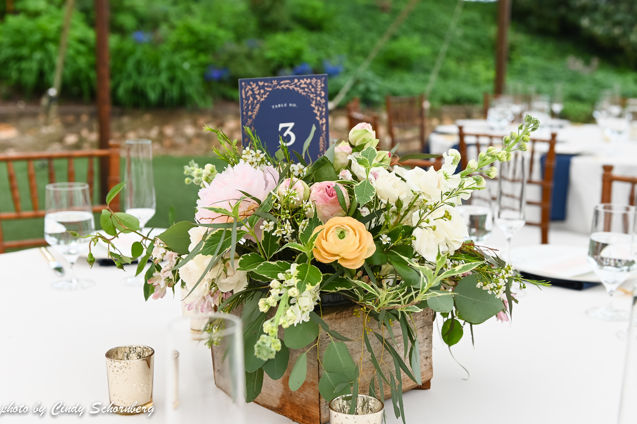 virginia_charlottesville_wedding_003.jpg