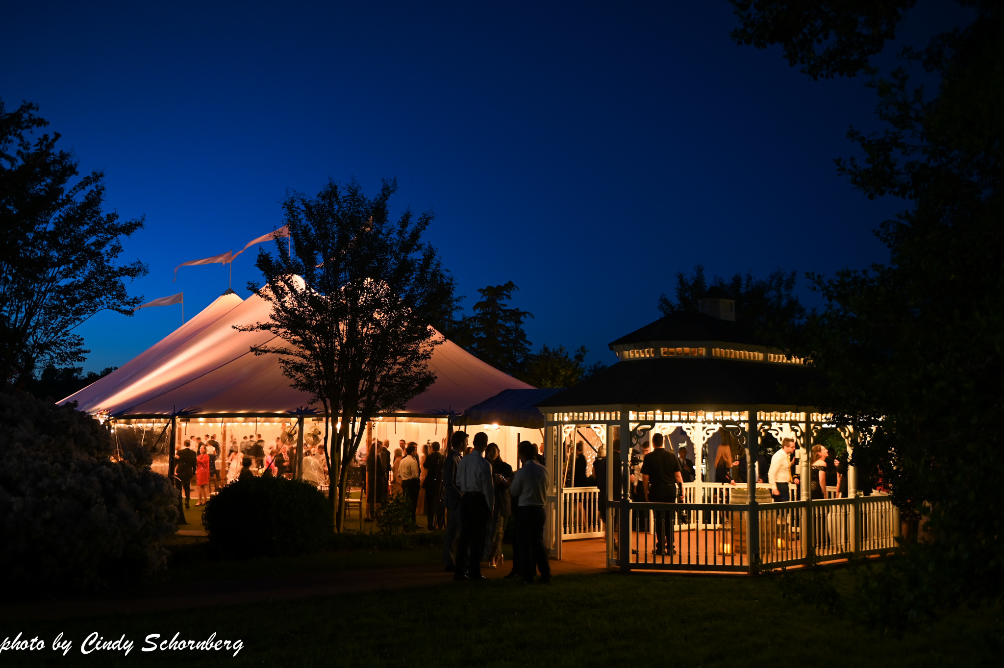 virginia_charlottesville_wedding_020.jpg