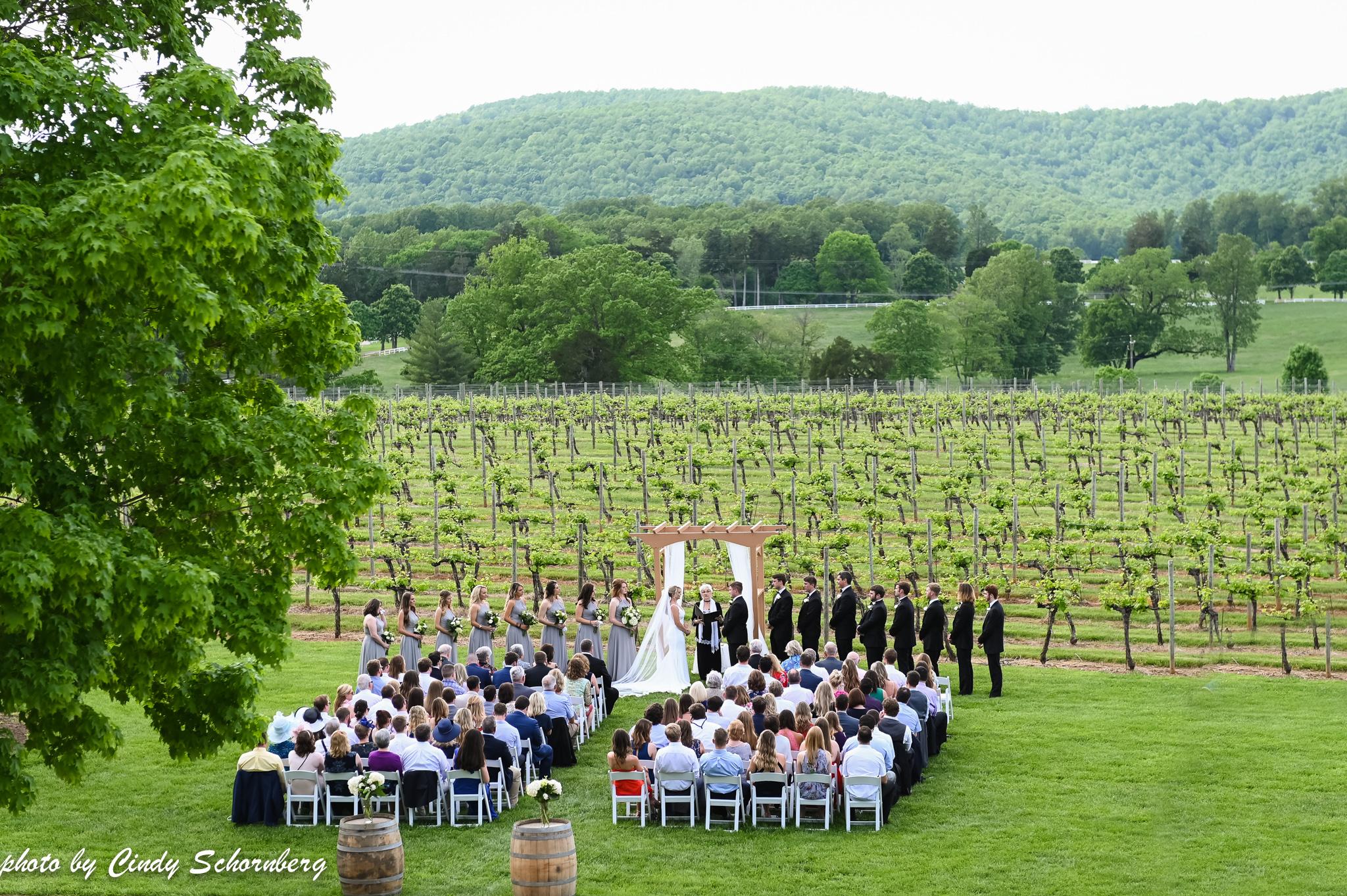Charlottesville_Wedding_01.jpg