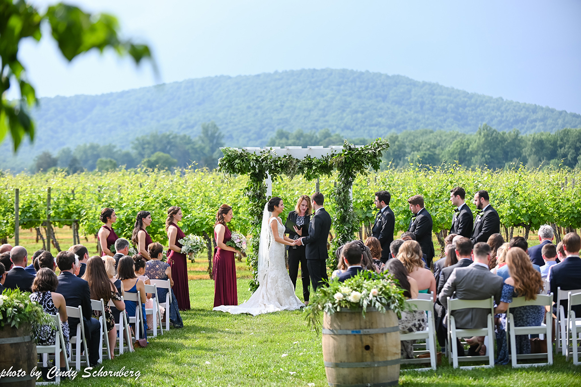 Virginia_Wedding7.jpg