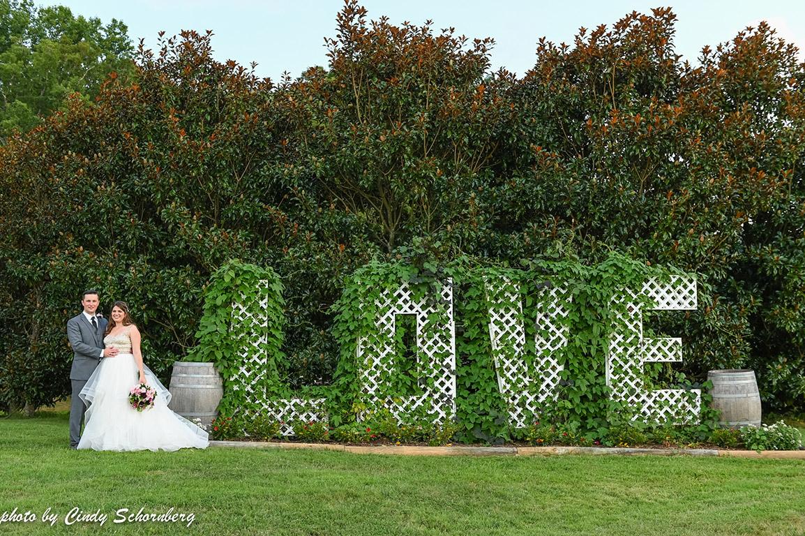 virginia_wedding_love.jpg