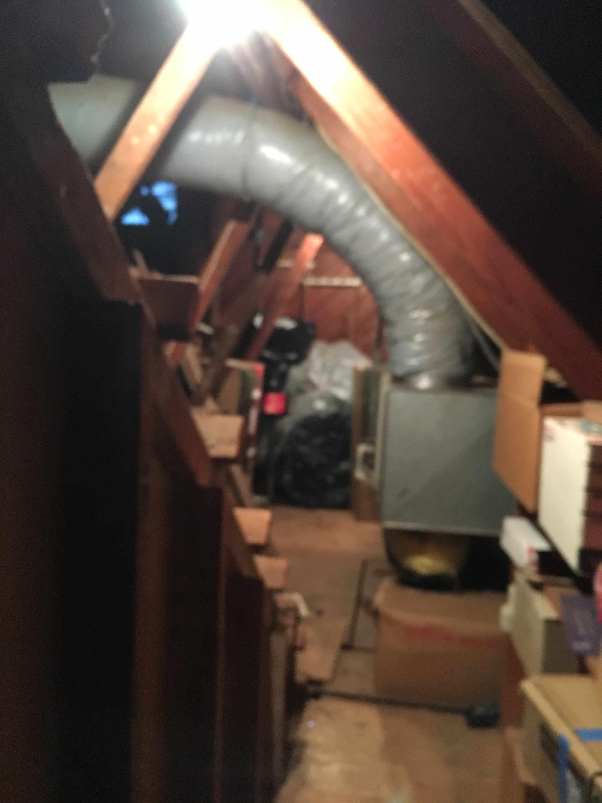 One attic and counting