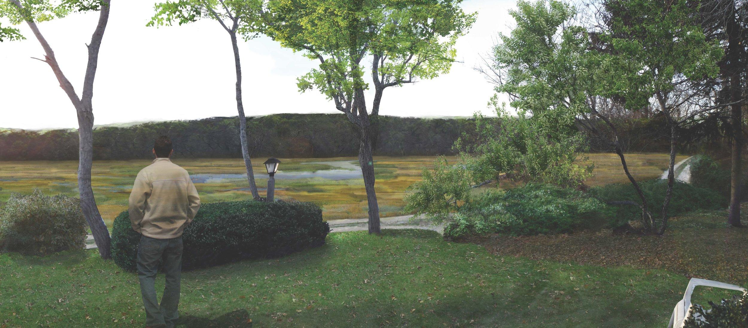 AFTER:Rendered illustration; view from property owner's home looking toward established salt marsh.