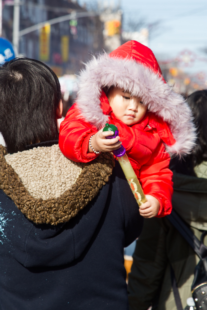 Lunar New Year-10.jpg