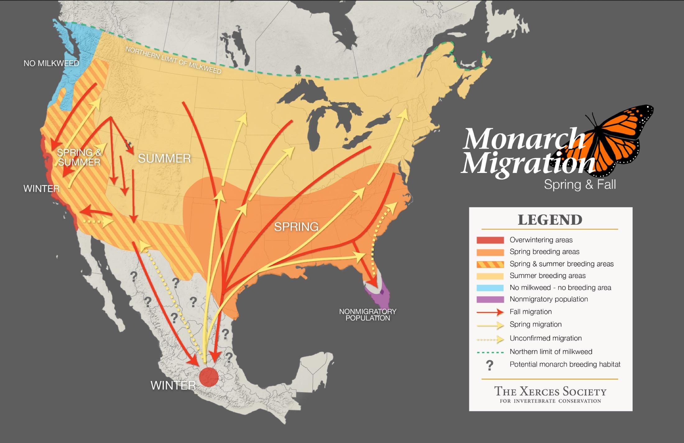 migration_map_xerxes.jpg